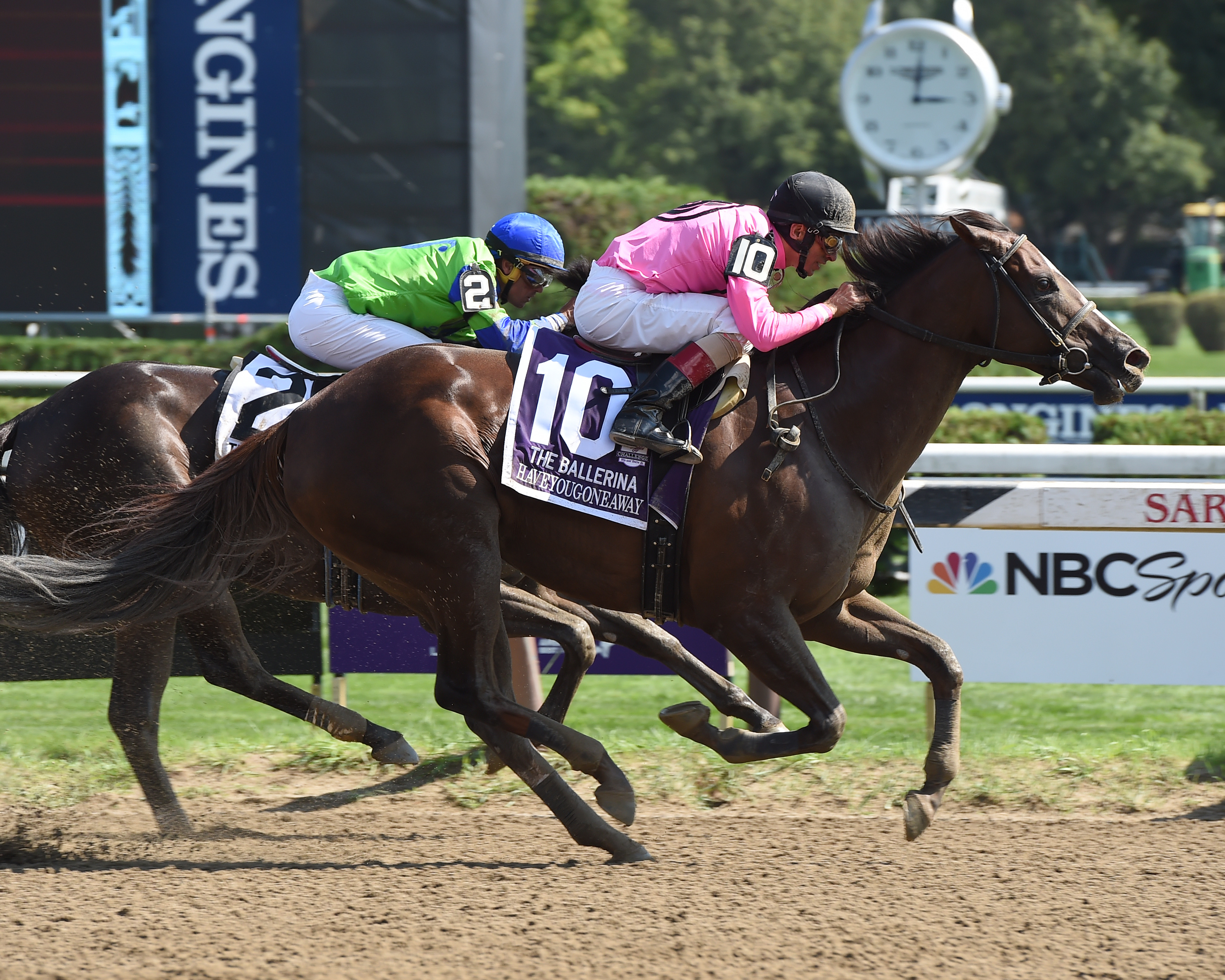 Haveyougoneaway wins the Ballerina at Saratoga. She now heads to Santa Anita on November 5 in the Breeders' Cup Filly & Mare Sprint. Photo: NYRA.com