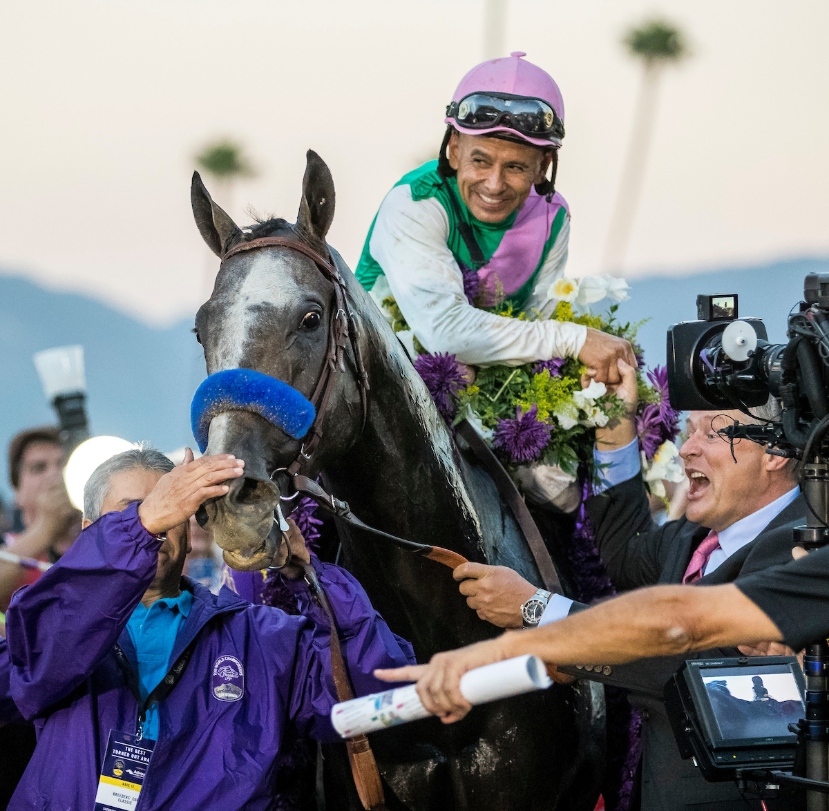 A moment to treasure: Mike Smith and Arrogate after the race. Photo: Alex Evers/Eclipse Sportswire/Breeders' Cup