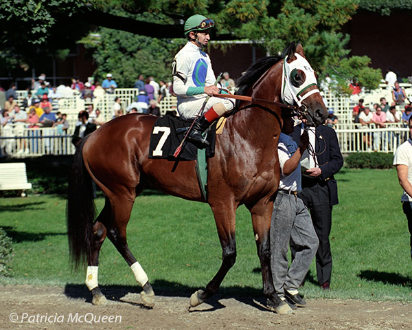 Innkeeper at Belmont Park on October 7, 1990, when he finished fourth in a maiden race. Photo: Patricia McQueen