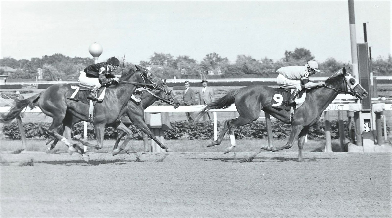 A serious racehorse: Lady Pitt wins the 1966 Mother Goose over Marking Time and Prides Profile