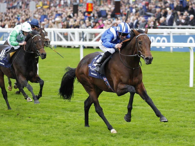 Muhaarar, a son of Oasis Dream and one of the fastest turf runners of recent seasons, wins the Qipco British Champions Sprint at Ascot in 2015. Photo: Steve Davies/Racingfotos.com