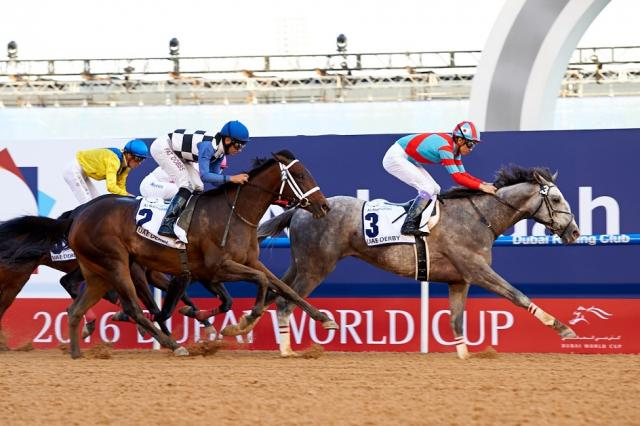 Lani wins the UAE Derby on Dubai World Cup day at Meydan last March to earn himself a trip to last year's Kentucky Derby. Photo: emiratesracing.com