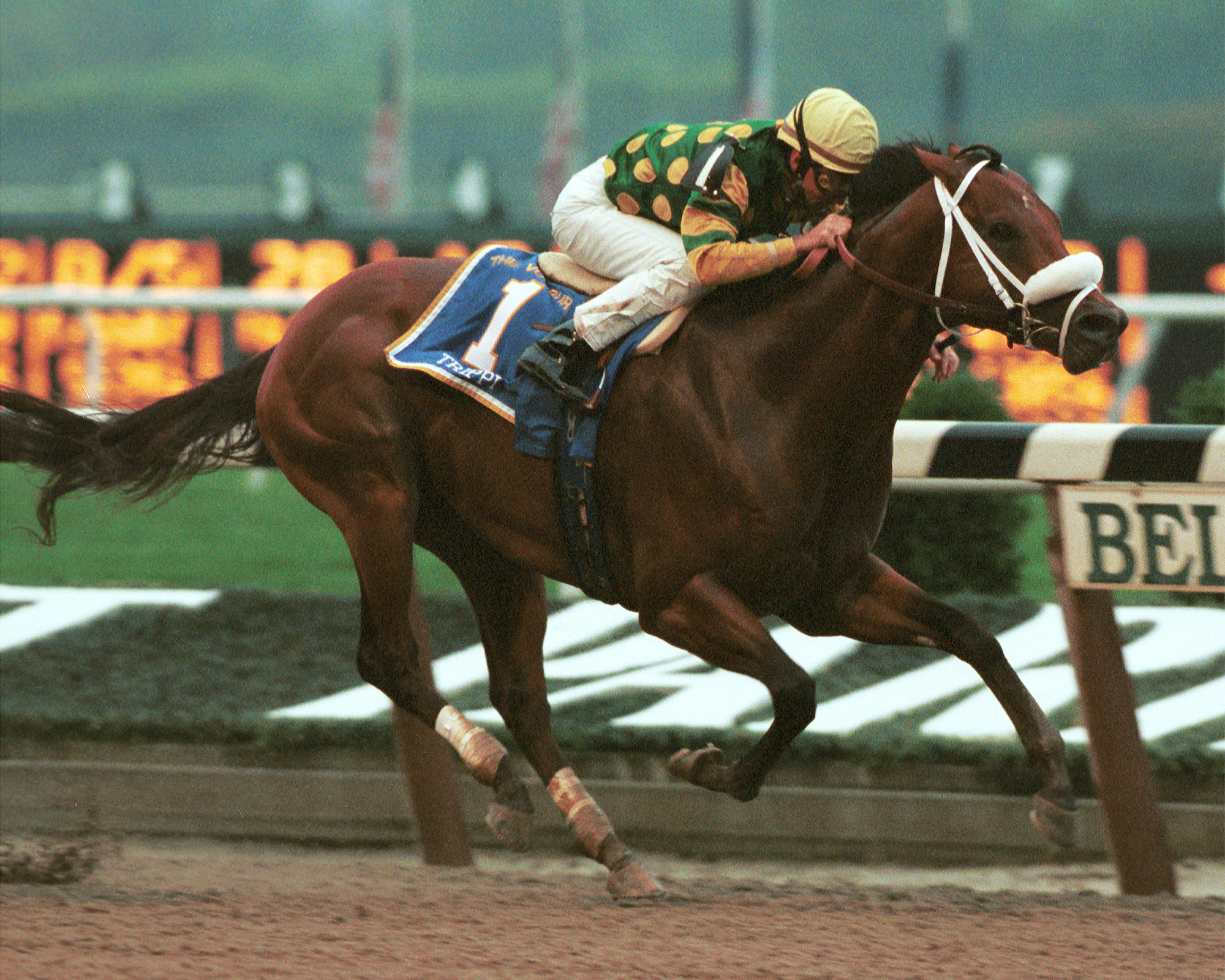 Grade 1 victory: Trippi winning the Vosburgh Stakes under Jerry Bailey at Belmont in 2000. Photo: Adam Coglianese
