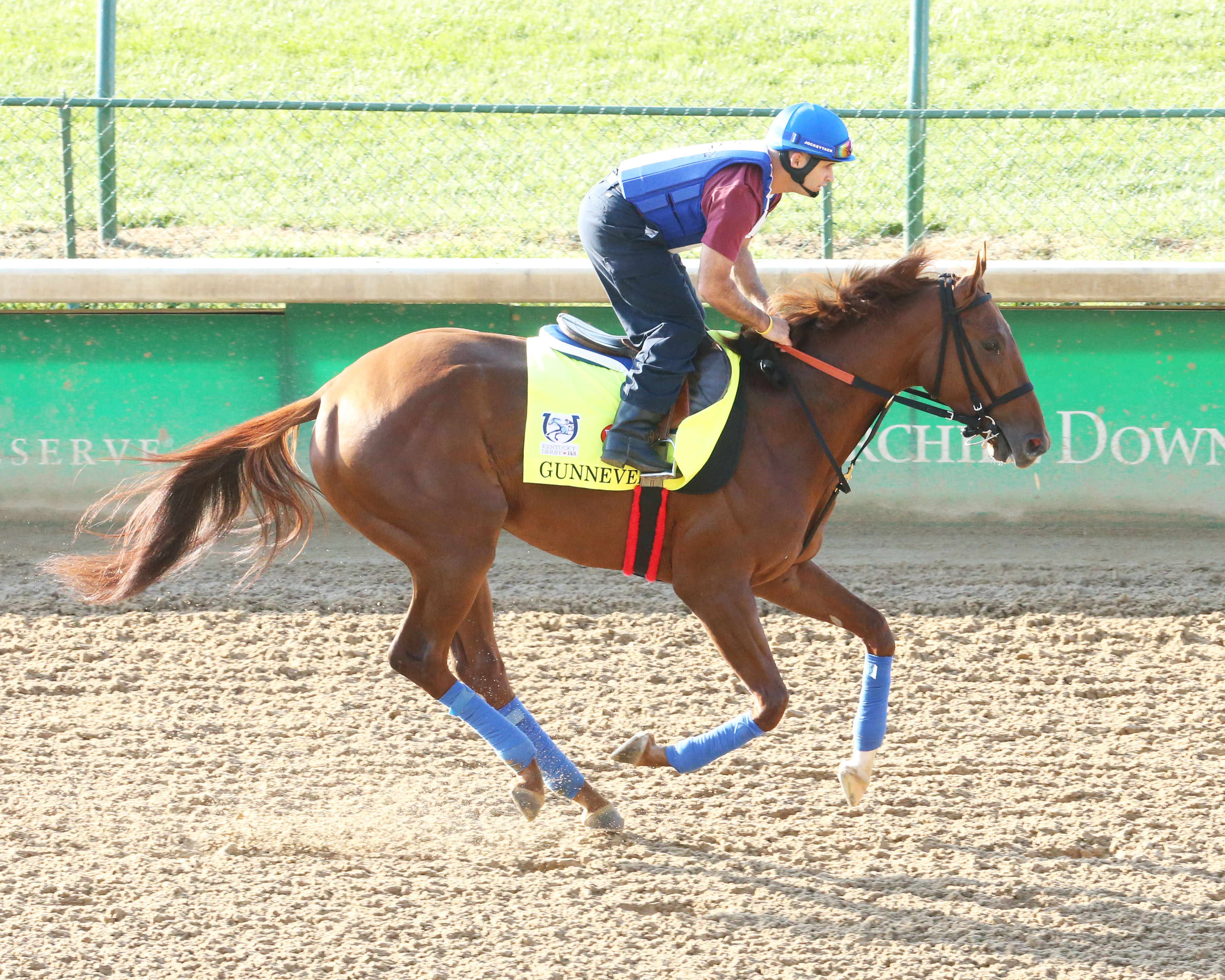 Gunnevera working out at Churchill Downs ahead of Saturday's Run for the Roses. Photo: Coady Photography