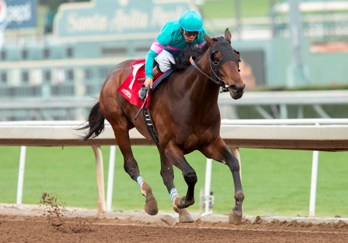 Royal Mo winning the G3 Robert B. Lewis Stakes at Santa Anita. Benoit Photo