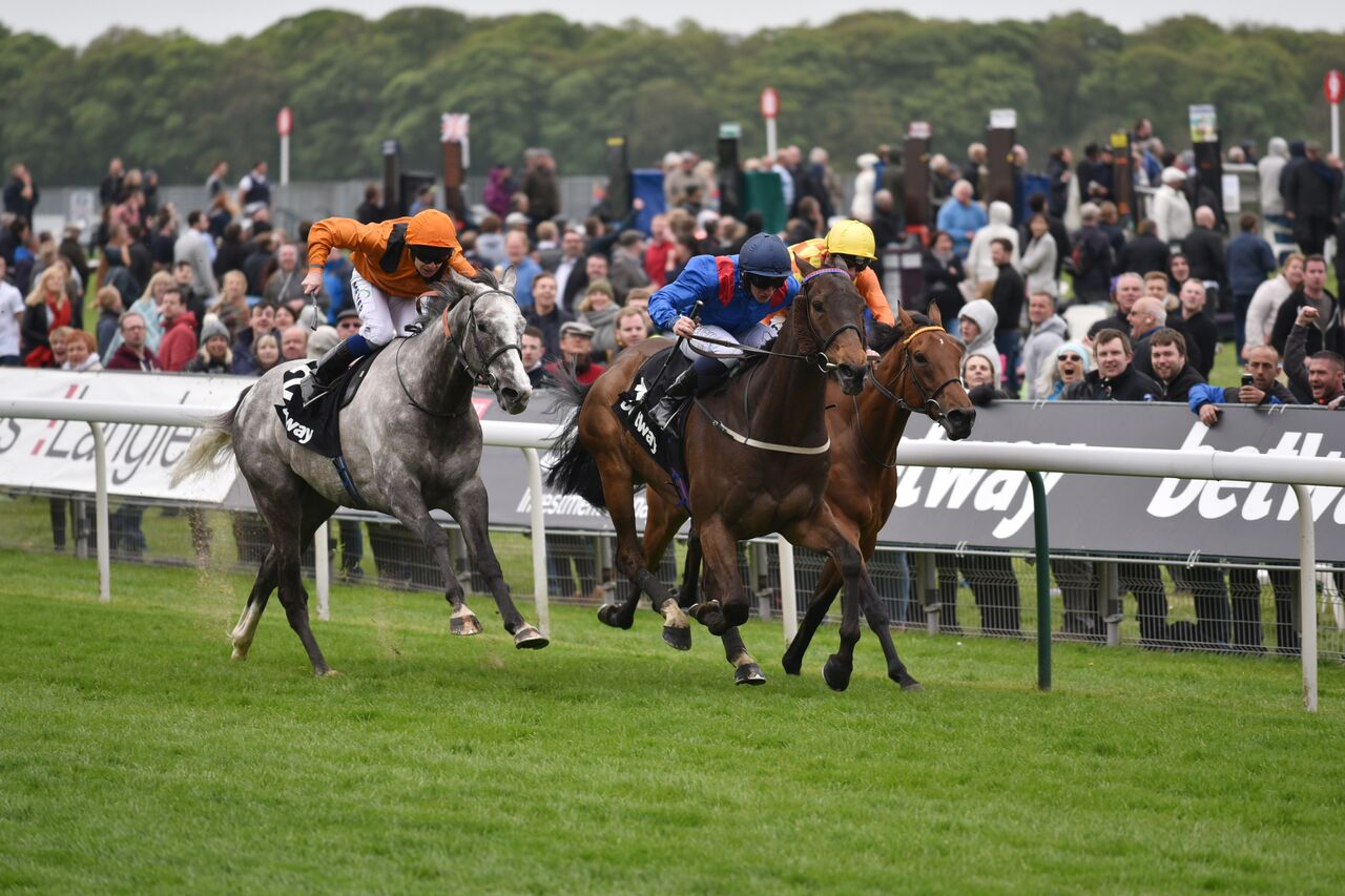 A real thriller: trainer Peter Niven's Clever Cookie (blue and red) holds off the grey Curbyourenthusiasm and Second Step to win the Betway Yorkshire Cup 12 months ago. Photo: York Racecourse