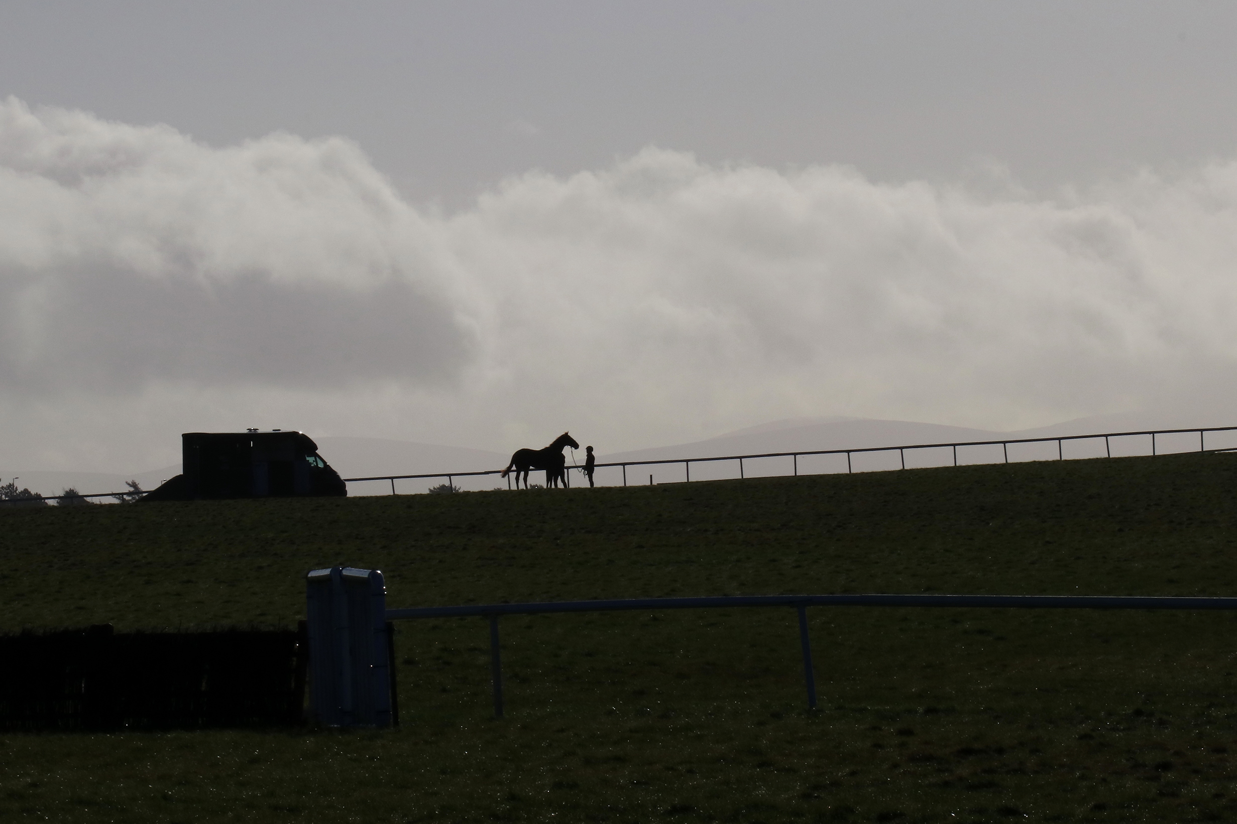 A lone horse gets ready for morning gallop at The Curragh training grounds. Photo: David Betts