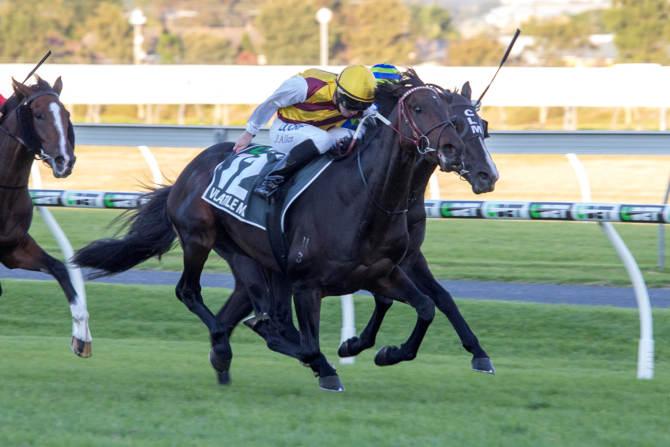 Volatile Mix takes the South Australian Derby at Morphettville under jockey John Allen. Photo: Atkins Photography