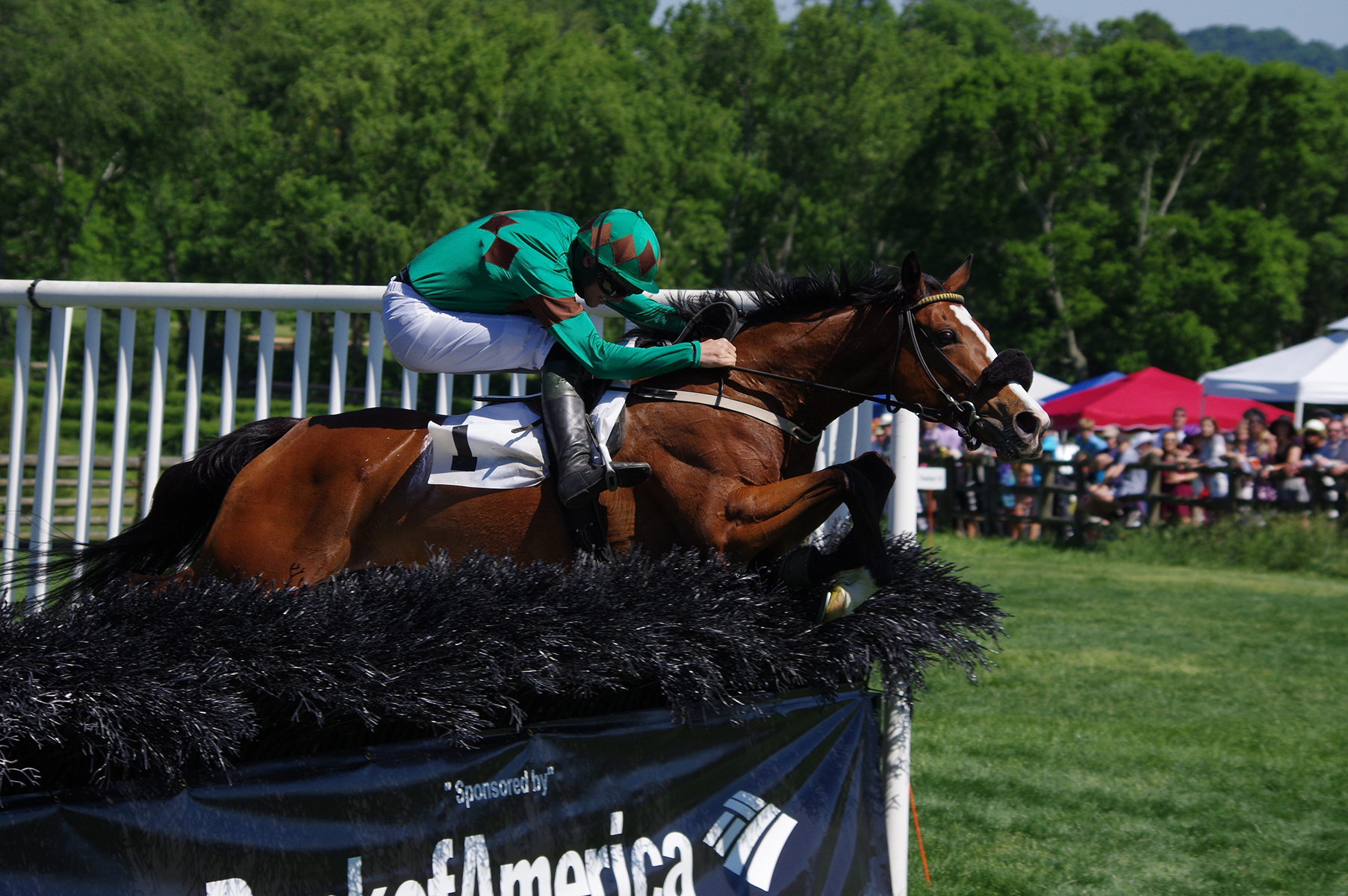 Sarah Joyce and Jack Doyle jump the last in the Margaret Currey Henley Hurdle on Iroquois Steeplechase day in Nashville, Tennessee. Photo: Meghan Janusz