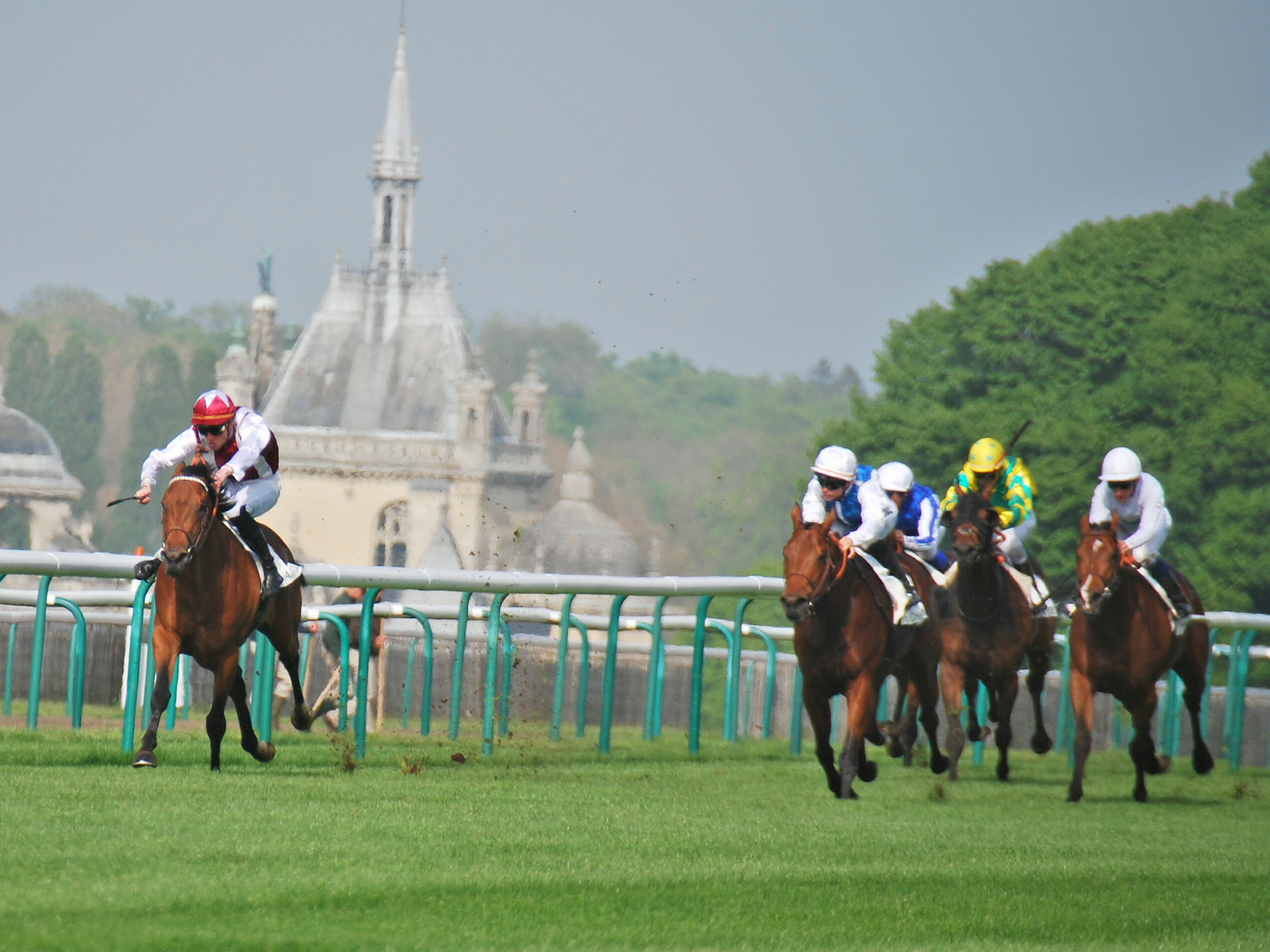 Contender: Phelps Win taking the Prix de Guiche at Chantilly from Plumatic (second left). Photo: John Gilmore