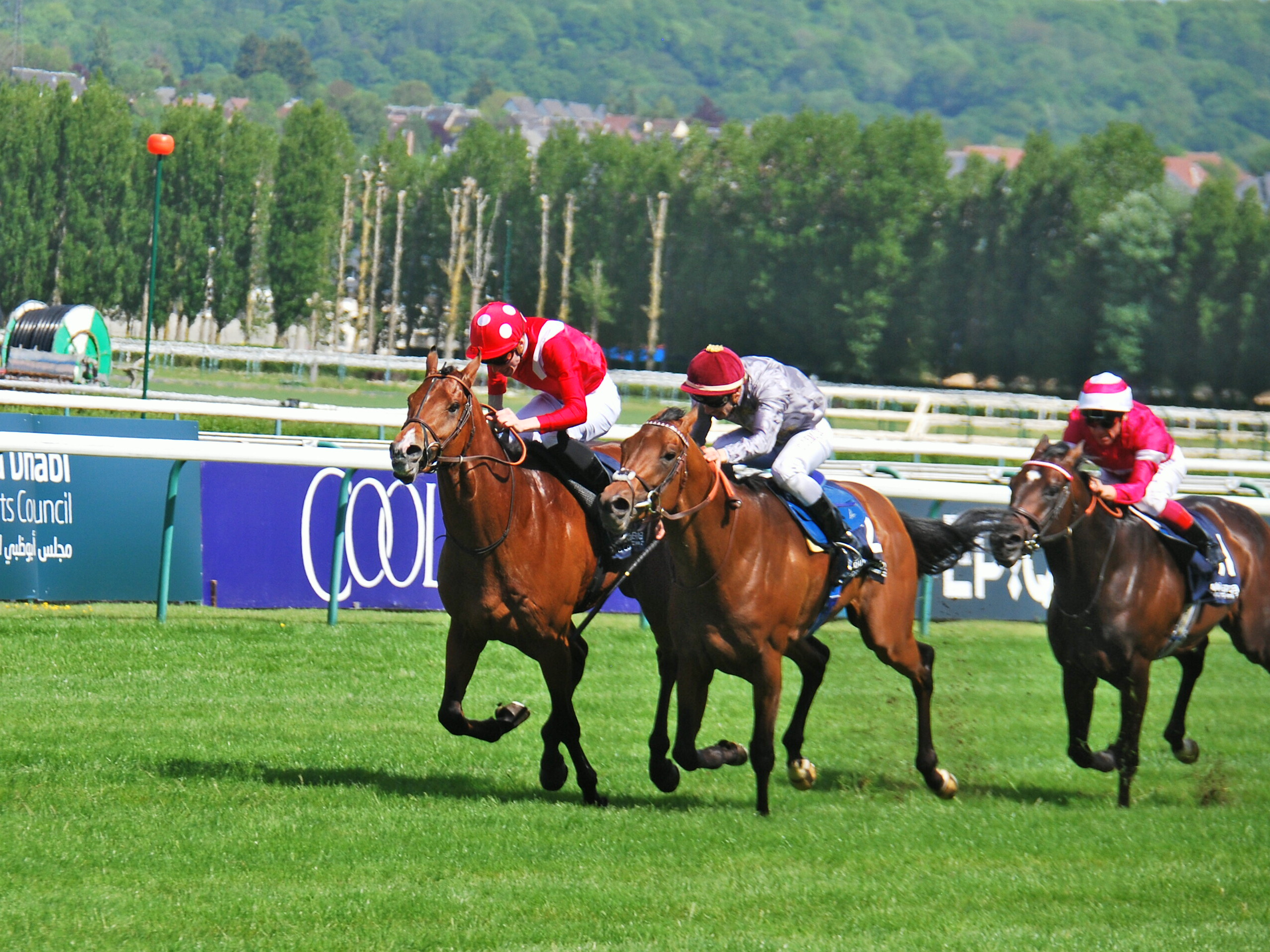 Contender: Brametot (centre) winning the Poule d'Essai des Poulains at Deauville from the Andre Fabre-trained Le Brivido (left) and Rivet. Photo: John Gilmore