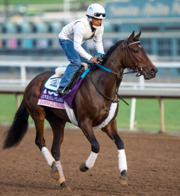 Trackwork: Daddys Lil Darling working at Santa Anita, where she finished fourth in the Breeders' Cup Juvenile Fillies last November