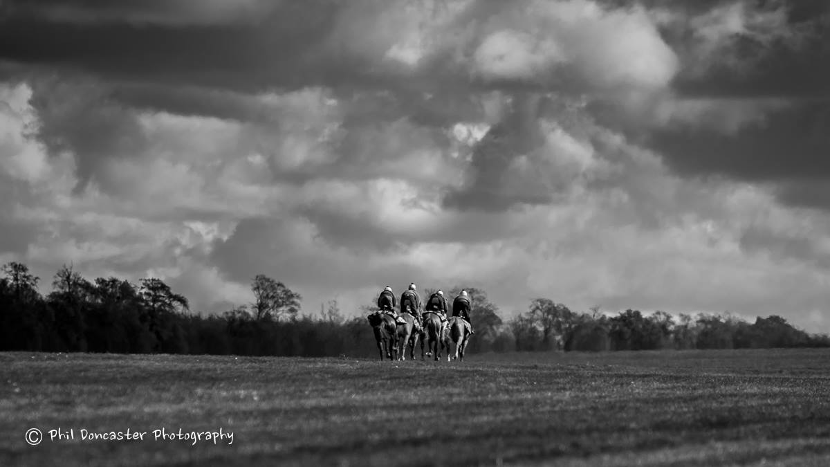 Four horses heading out for work on Warren Hill in Newmarket. Photo: Phil Doncaster.