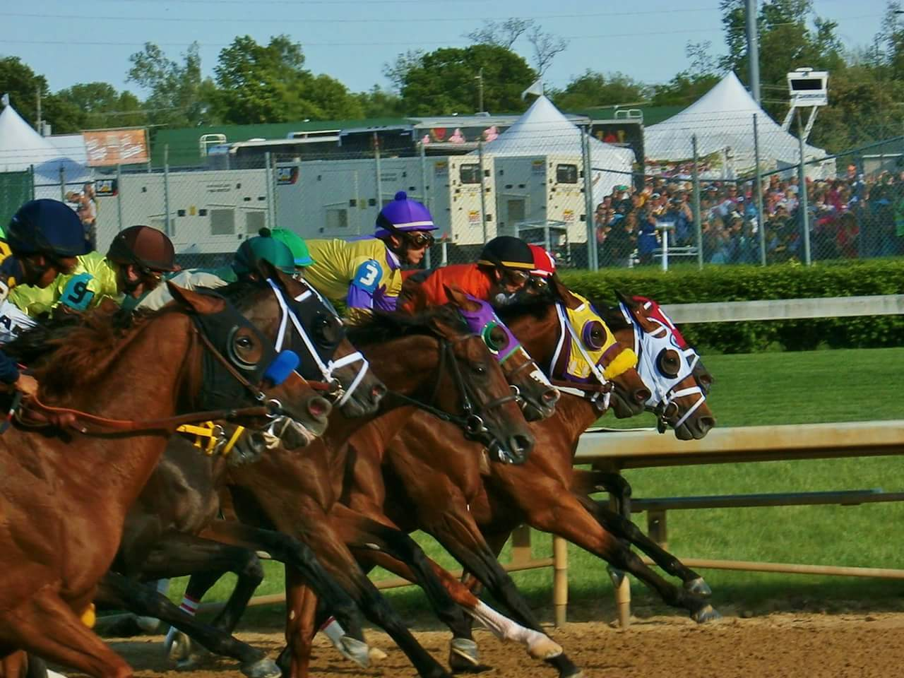 The horses breaking from the gate in the 140th Kentucky Derby. Photo: Christine Sanchez