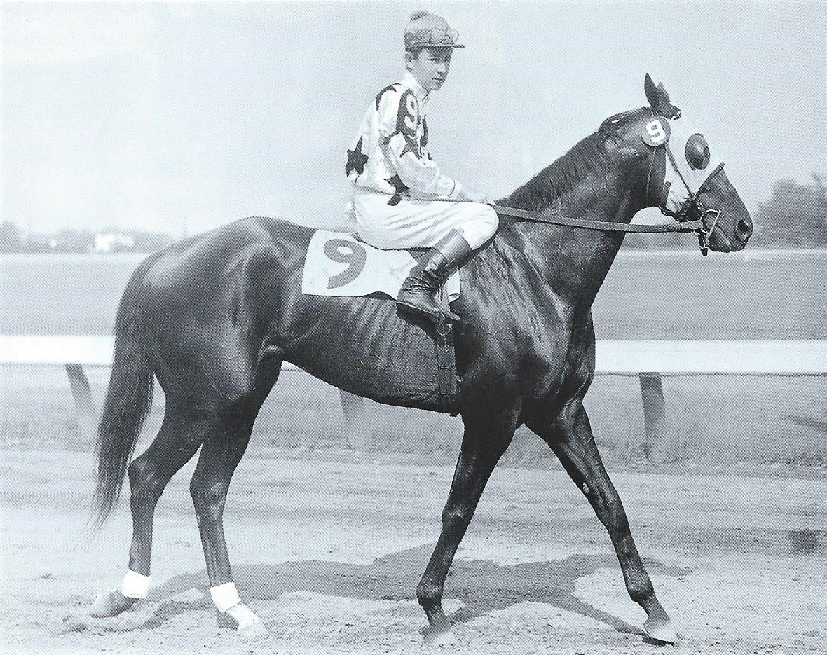 Contender: Brownie, who had been beaten by Bossuet in a previous race, was a 10/1 shot. Photo: Garden State Park