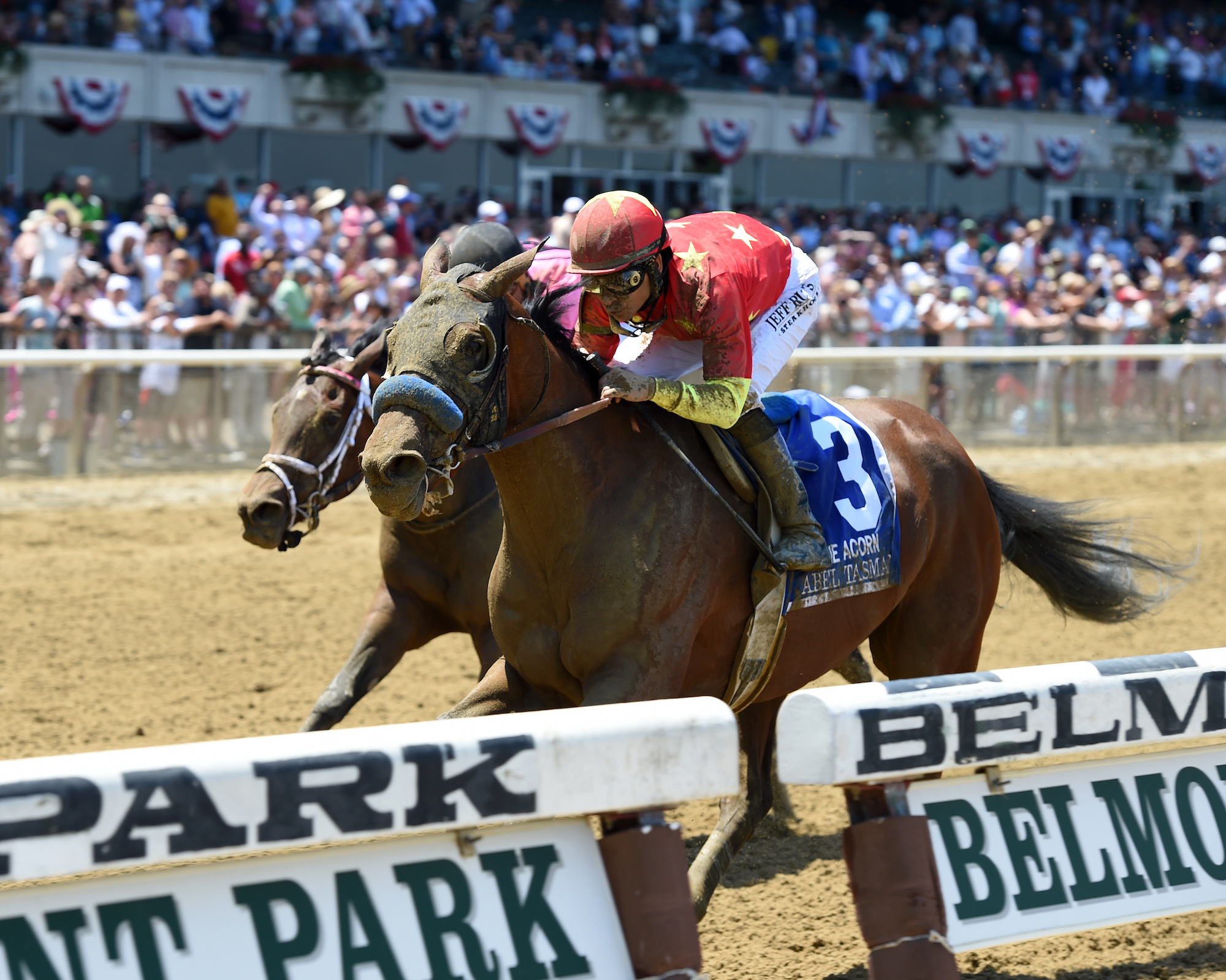 Abel Tasman winning the Acorn Stakes at Belmont Park in June. The filly failed to reach her reserve when Clearsky sent her to the sales, so it was stroke of luck that they kept her. Photo: Joe Labozzetta/NYRA.com