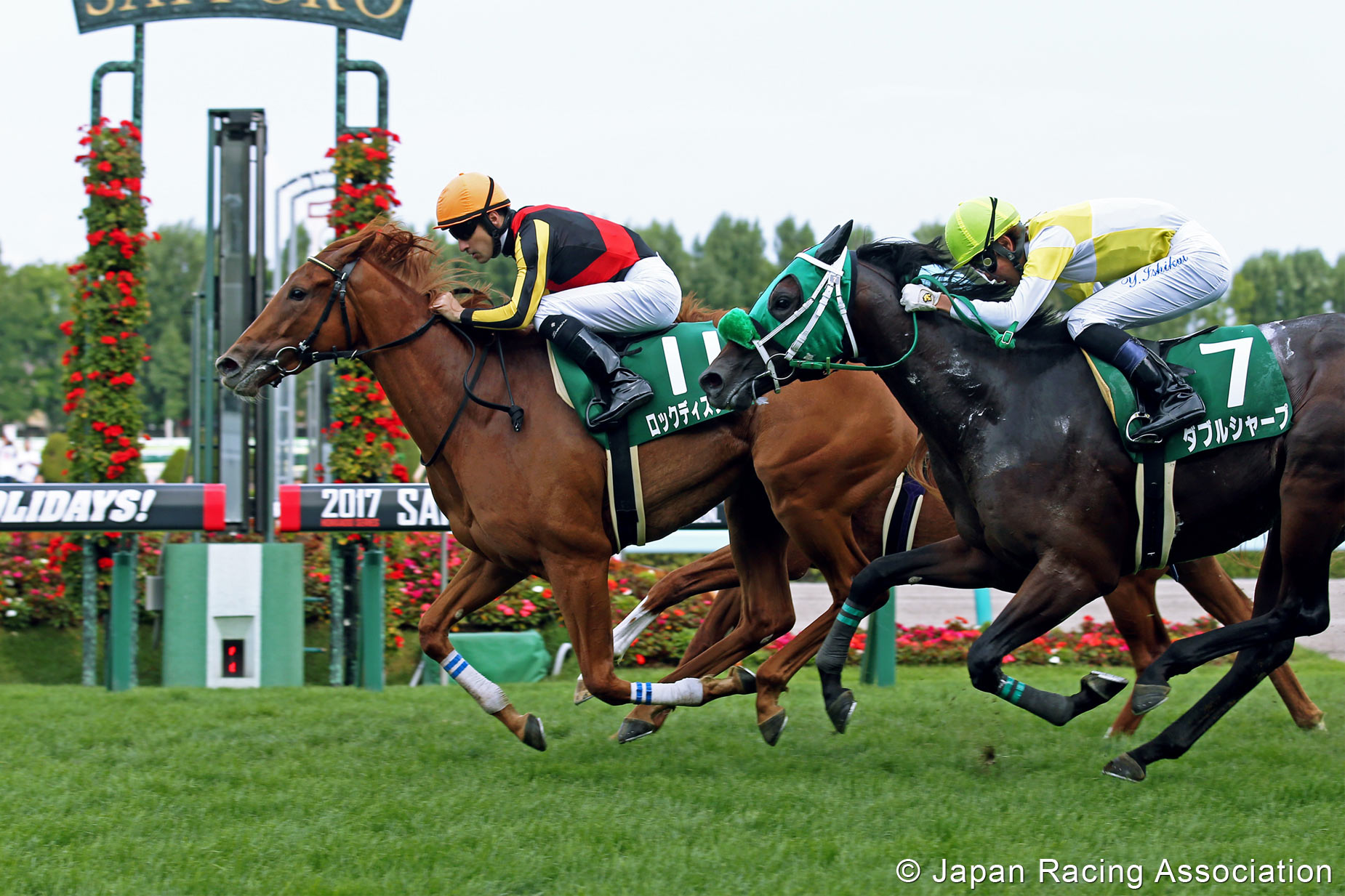 Just the beginning? Orfevre's daughter Rock This Town (Christophe Lemaire) wins a G3 at Sapporo last month. Photo: Japan Racing Association