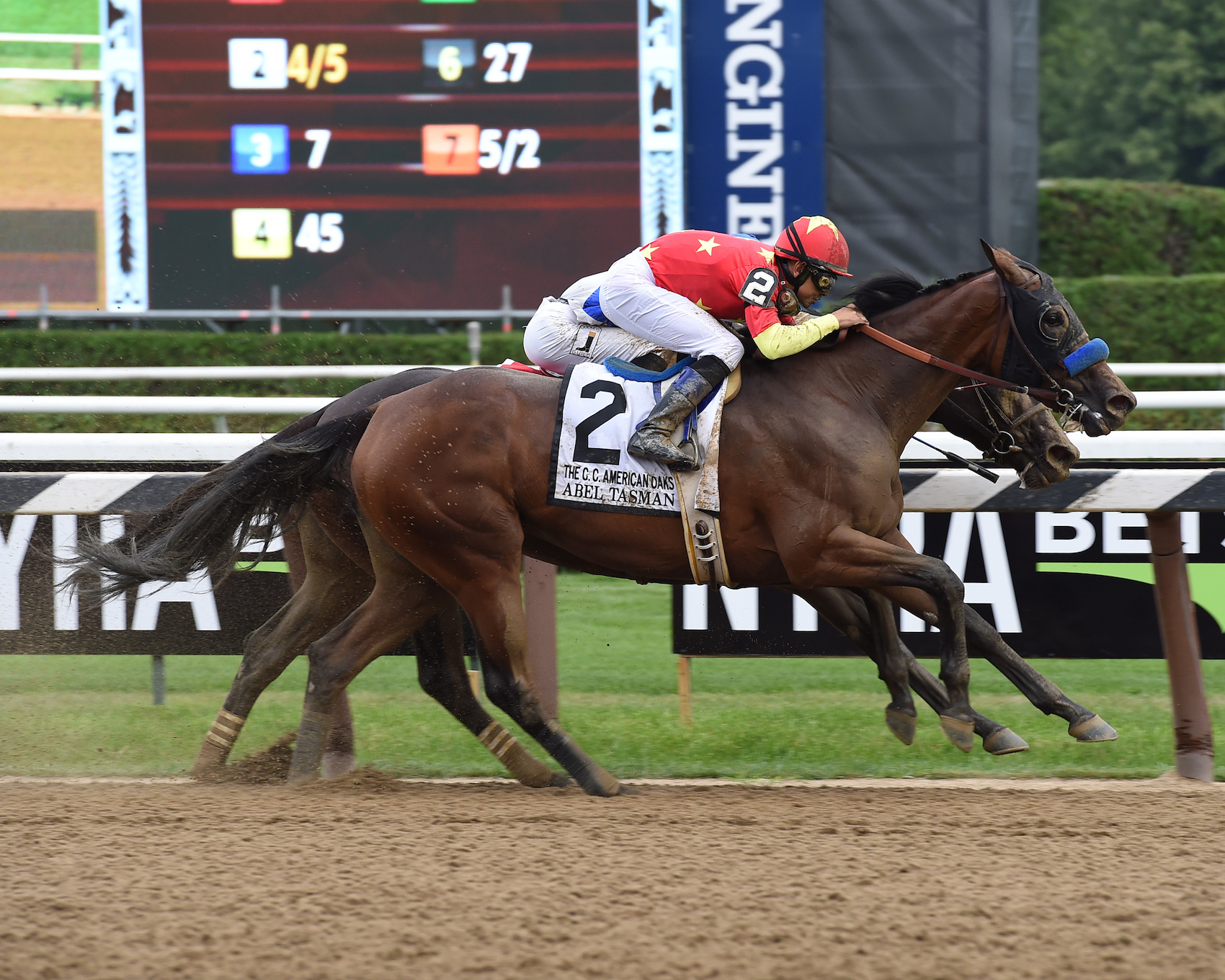 Abel Tasman wins the Coaching Club American Oaks at Saratoga in July by a head from Elate. Photo: NYRA.com