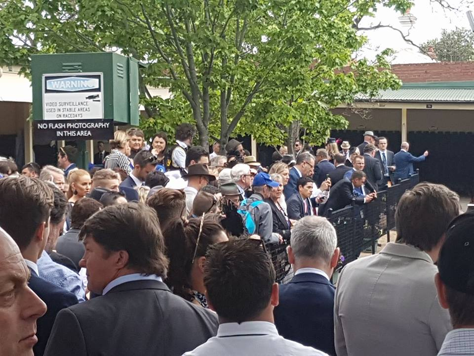 Expectant crowd: fans started gathering to get a glimpse of Winx long before she arrived at Moonee Valley. Photo: Kristen Manning