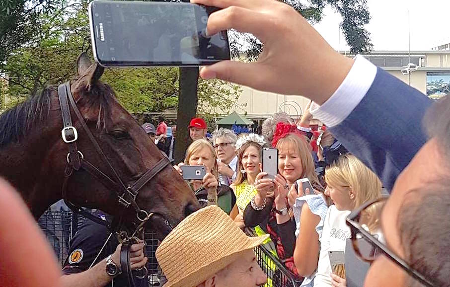Adoring public: racegoers crowd in to take photos of Australia's darling after the race. Photo: Kristen Manning