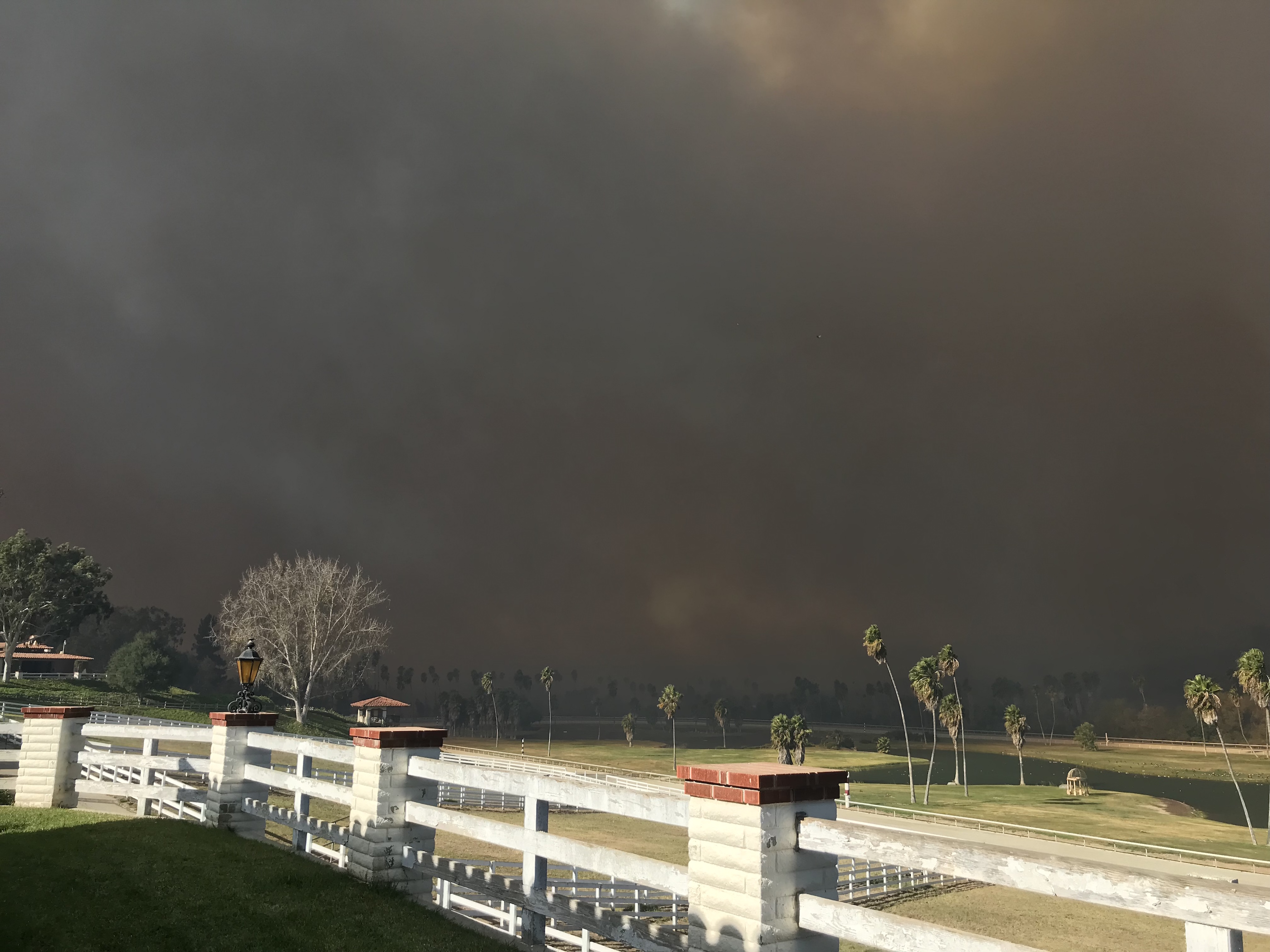 Doom-laden skies: the view from the Trifecta Equine Athletic Center, where about 70 horses were taken in from nearby San Luis Rey Downs