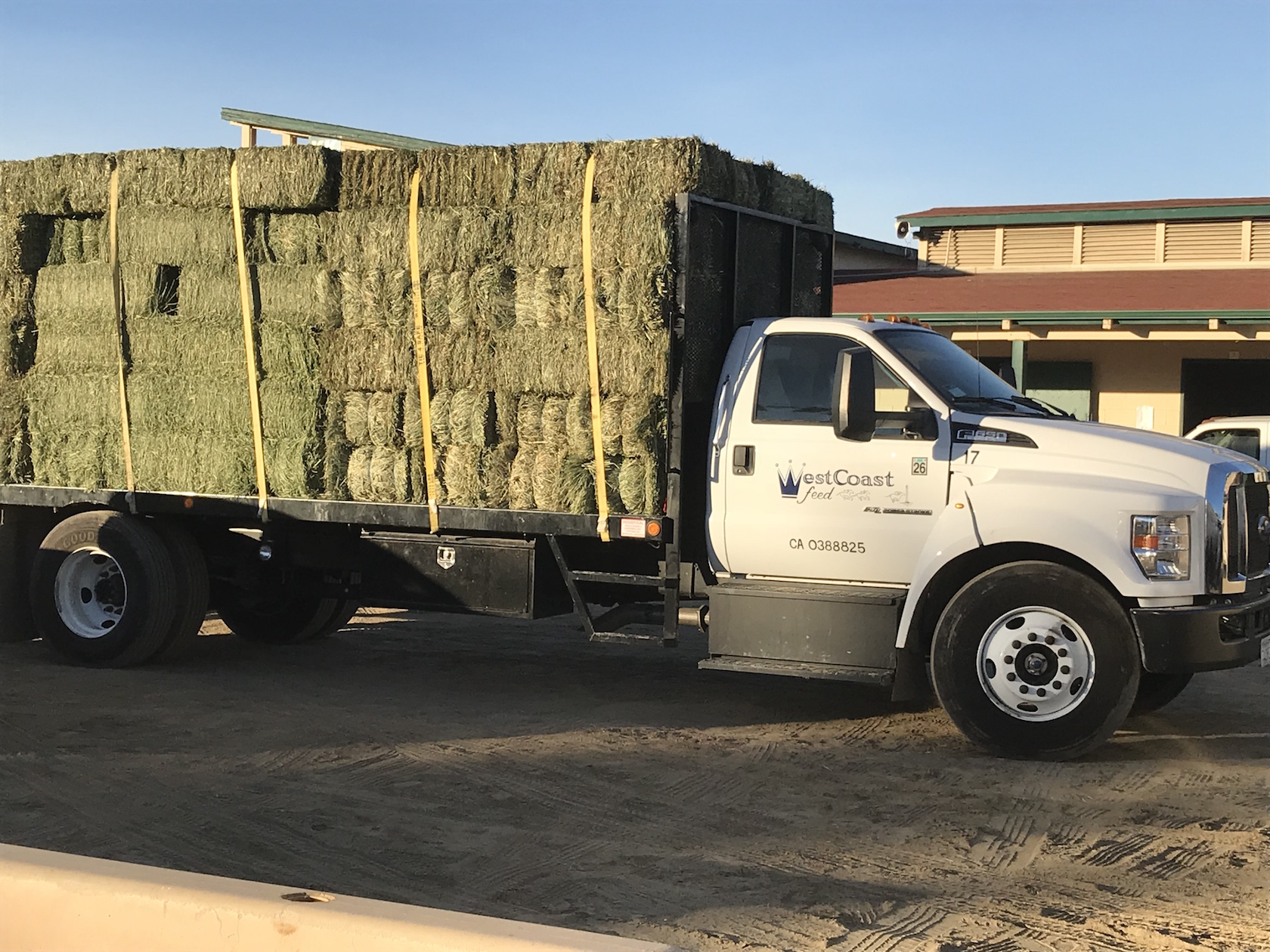 Truck-loads of hay from local feed companies were among the desperately needed supplies vanned in to Del Mar. Photo: Zoe Cadman