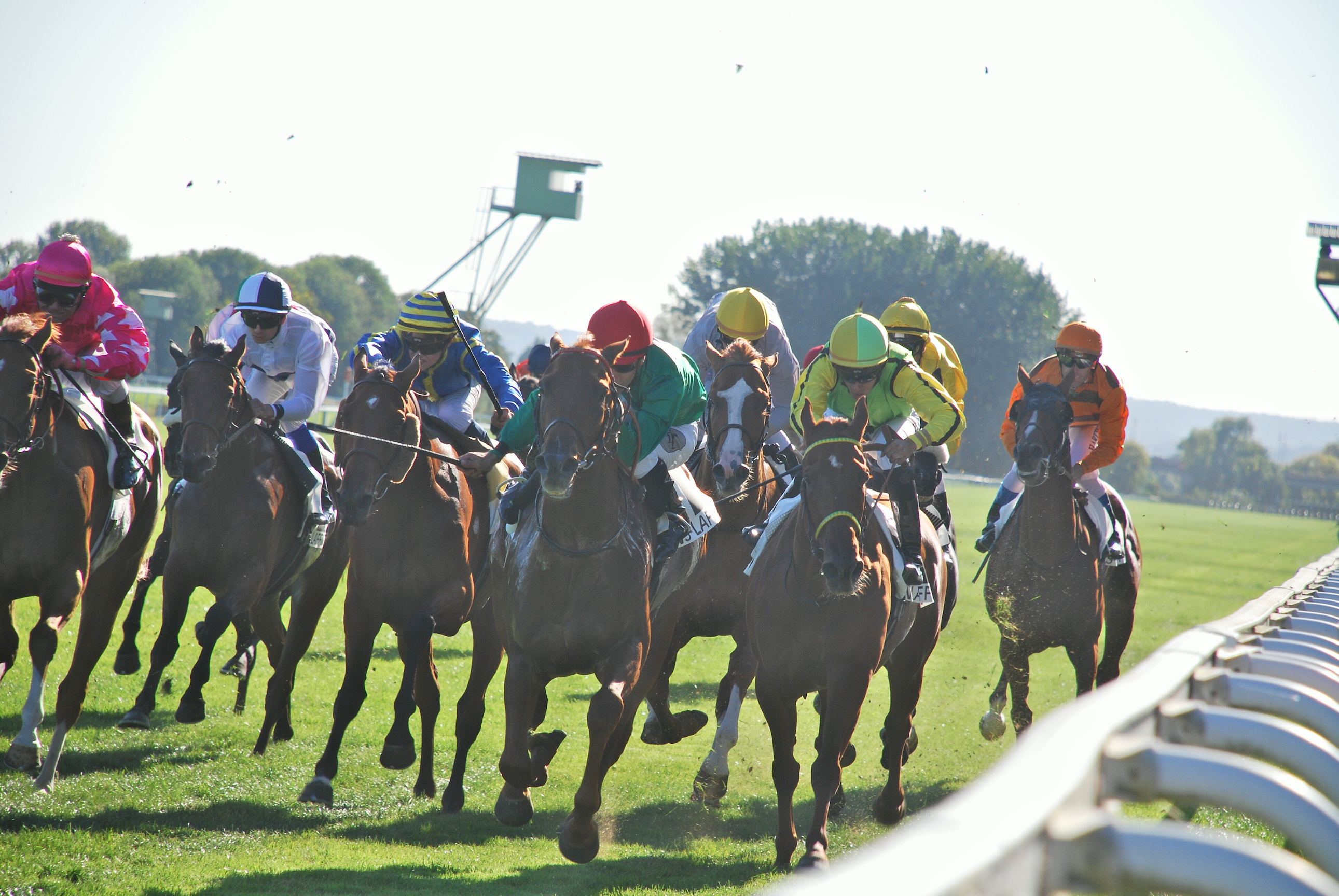 Betting coup: the Maisons-Laffitte race won by the Gina Rarick-trained Skid Solo (green colours, red cap), backed by Mark Cramer and Alan Kennedy at 20/1. Photo: John Gilmore