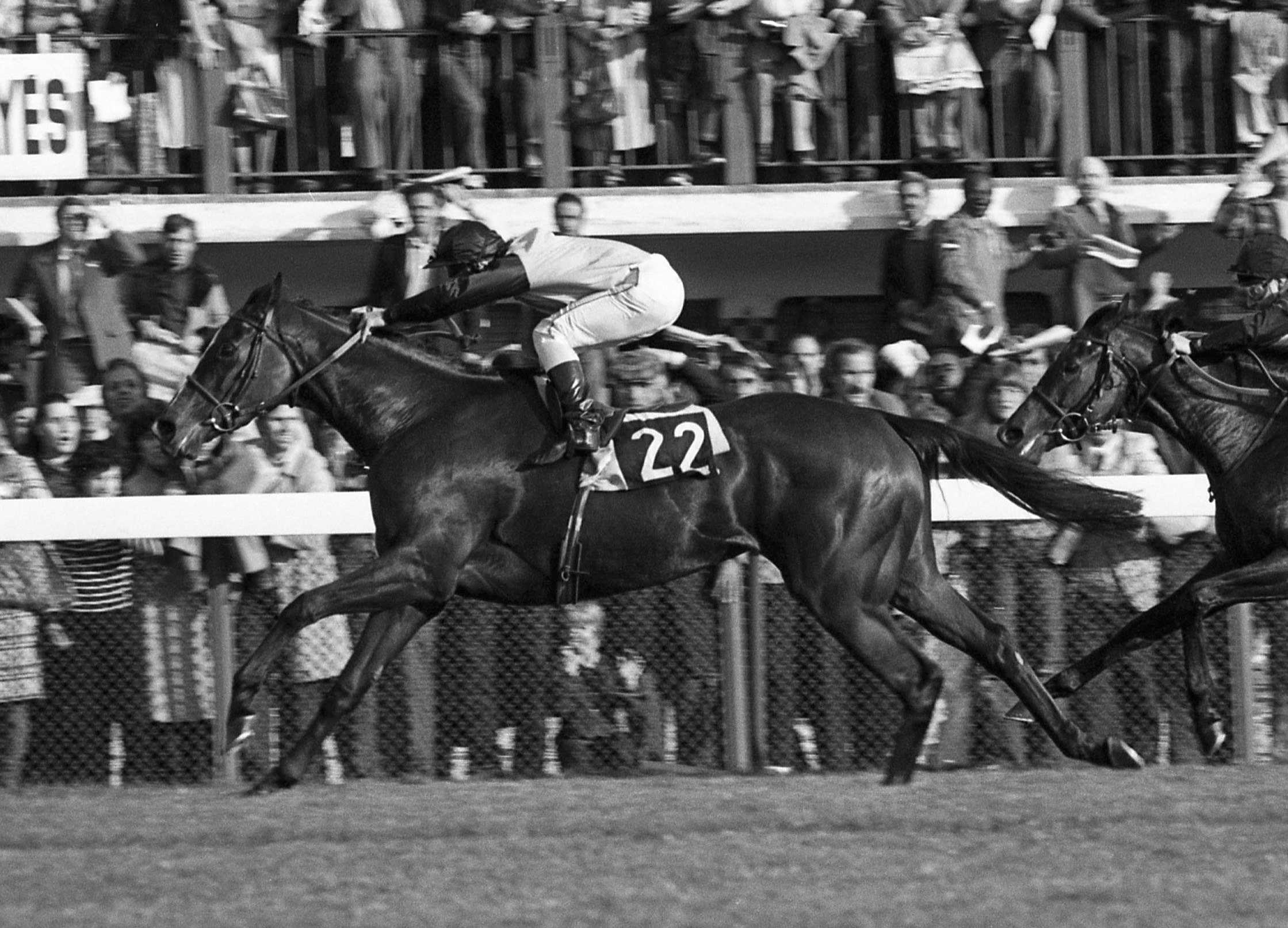 Golden moment: Three Troikas, trained by Criquette, ridden by Freddy and owned by their mother, Ghislaine, wins the Arc in 1979. Photo: Mark Cranham
