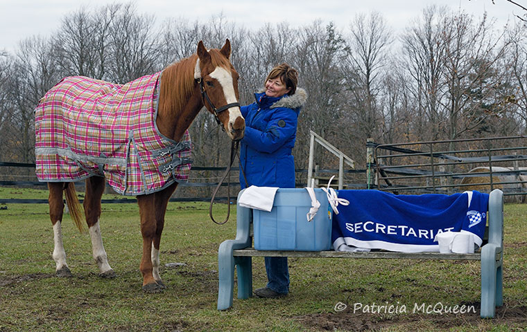 Maggie LeBlanc with Time Alert at the farm in Ontario, alongside the white bridle, saddle cloth and wraps that he has worn on public appearances at Woodbine. Photo: Patricia McQueen