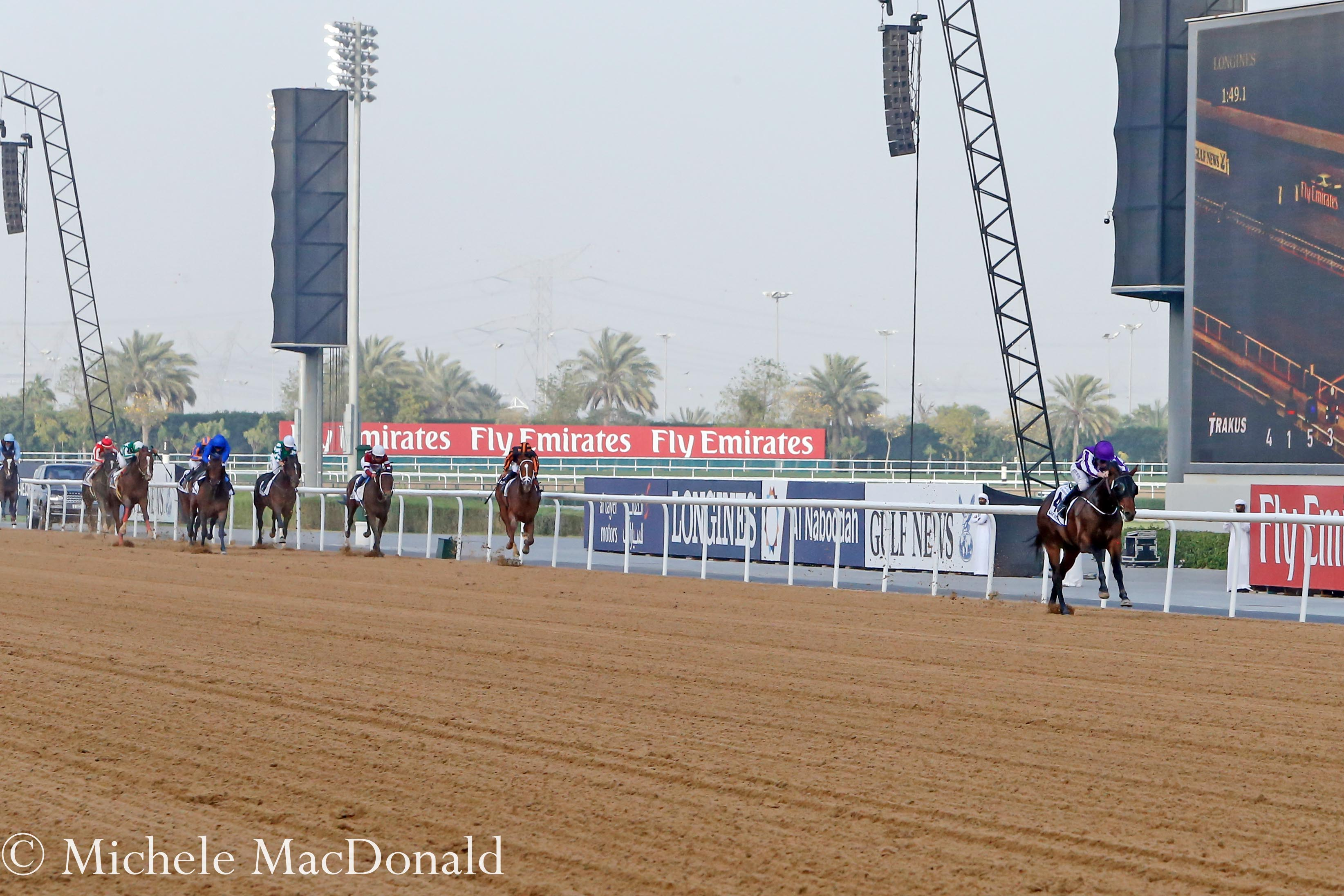 In a league of his own: Mendelssohn draws just further and further clearn down the stretch in the UAE Derby. Photo: Michele MacDonald