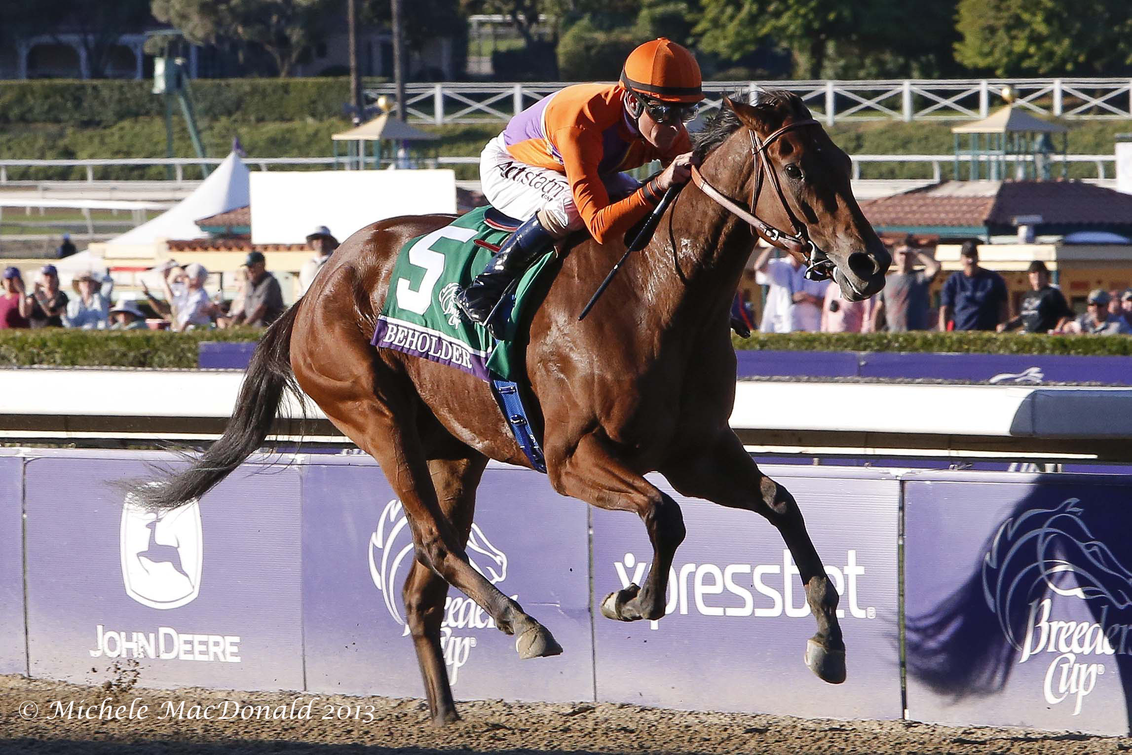 Beholder winning the Breeders' Cup Distaff  at Santa Anita in 2013. Photo: Michele MacDonald