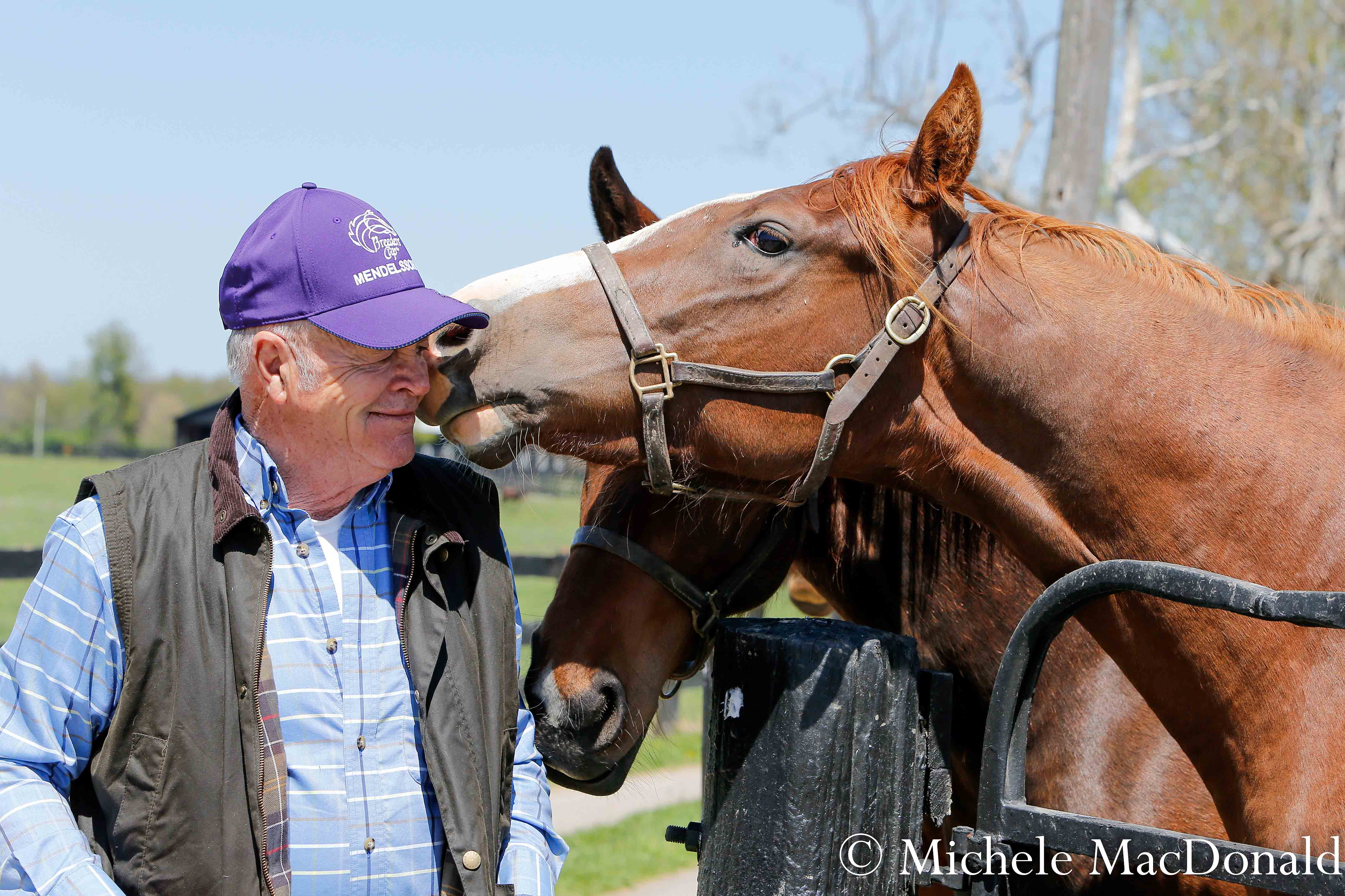 Clarkland co-owner Fred Mitchell with some of the 2-year-old fillies at the farm. Photo: Michele MacDonald