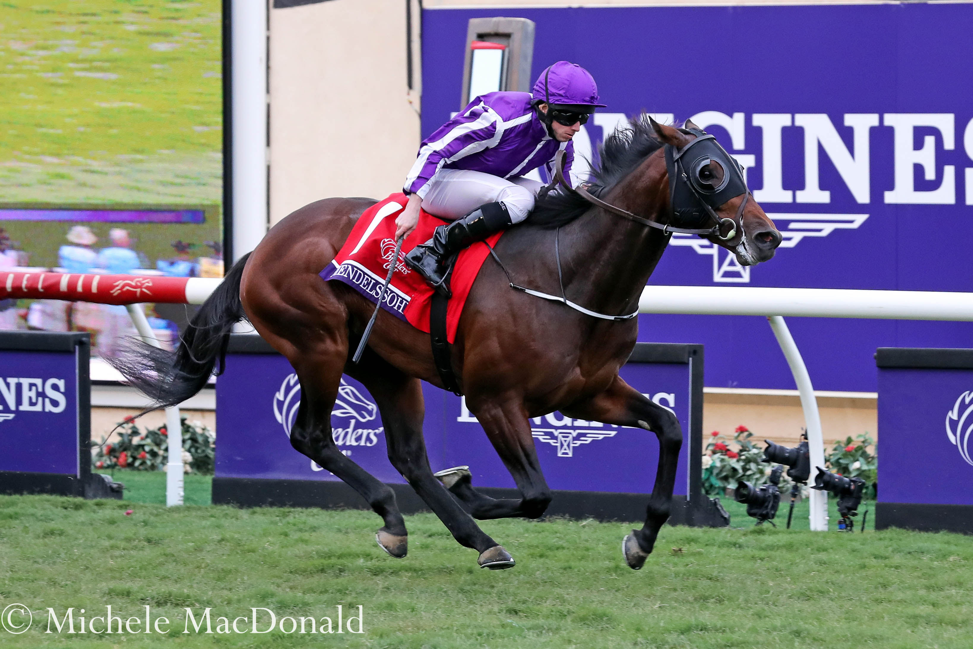 Mendelssohn wins the Breeders' Cup Juvenile Turf at Del Mar last November. Photo: Michele MacDonald