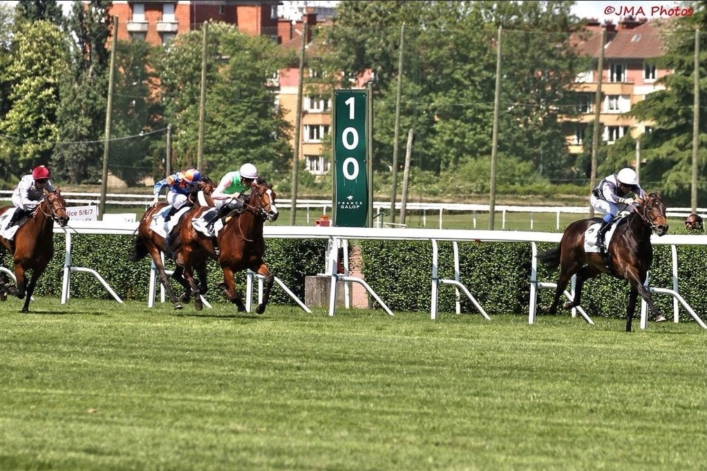 Study Of Man showed impressive acceleration when winning the Prix Greffulhe at Saint-Cloud. Photo: Jean Michel Anello