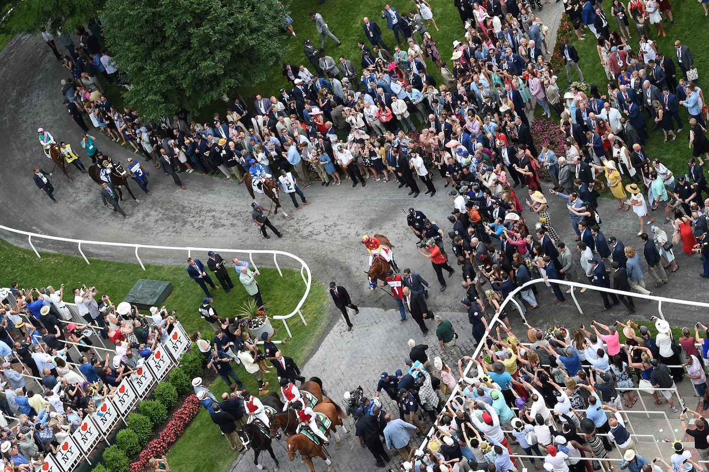 A crowd in raptures: they're all celebrating as Justify (centre) and the other runners are led back after the race. Photo: Amira Chichakly/NYRA.com
