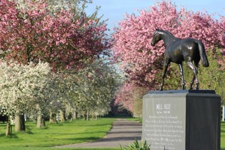 National Stud icon: a statue of the great Mill Reef in the grounds. Photo: National Stud