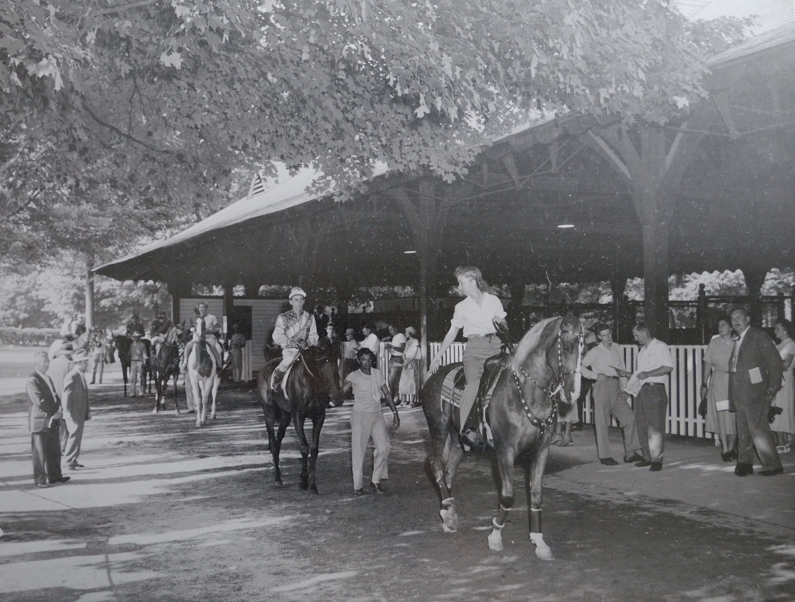 The informal comingling of horses, grooms, jockeys and fans in the paddock at Saratoga Race Course