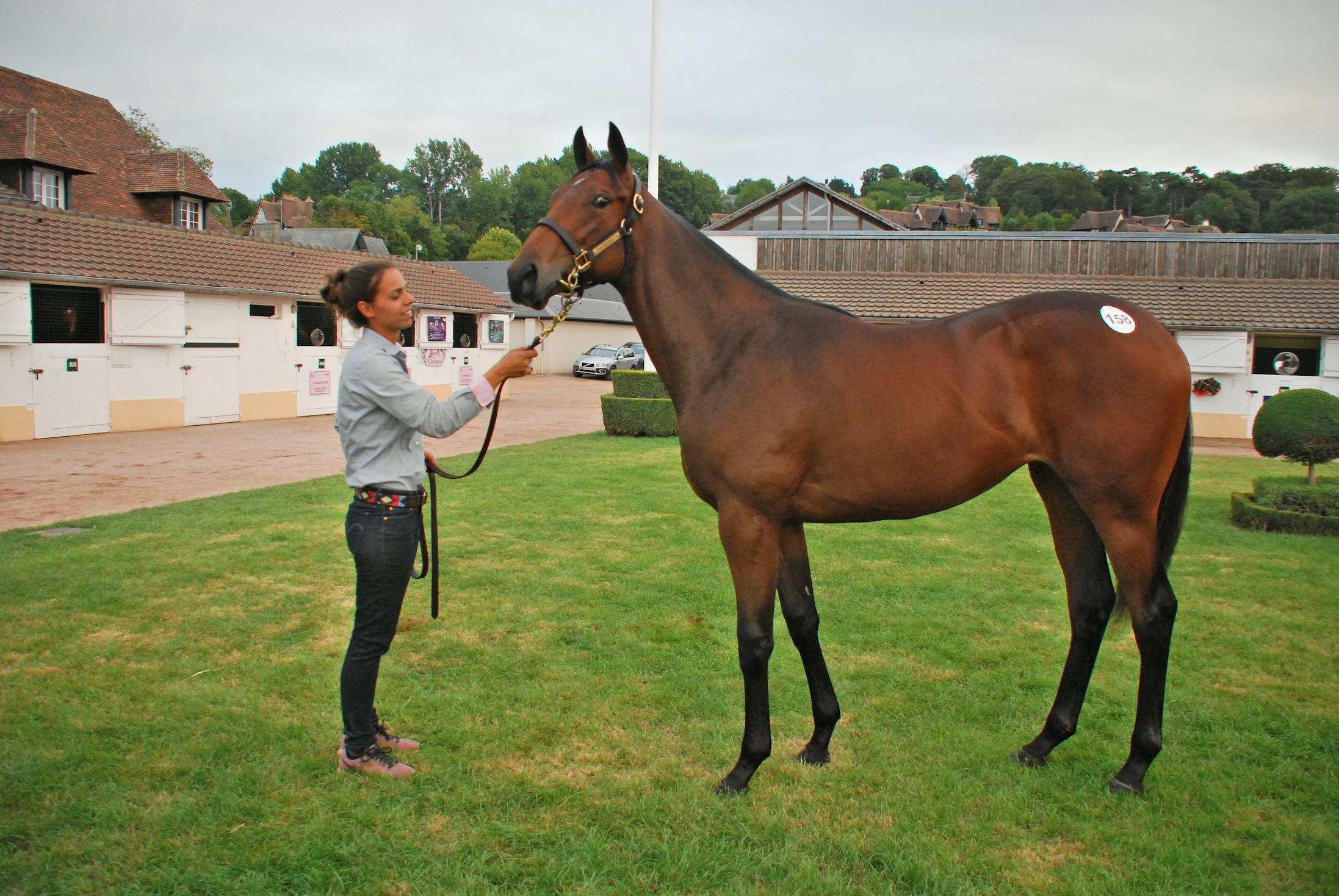 This American Pharoah filly out of Marbre Rose went to American agent David Greathouse for €850,000. Photo: John Gilmore