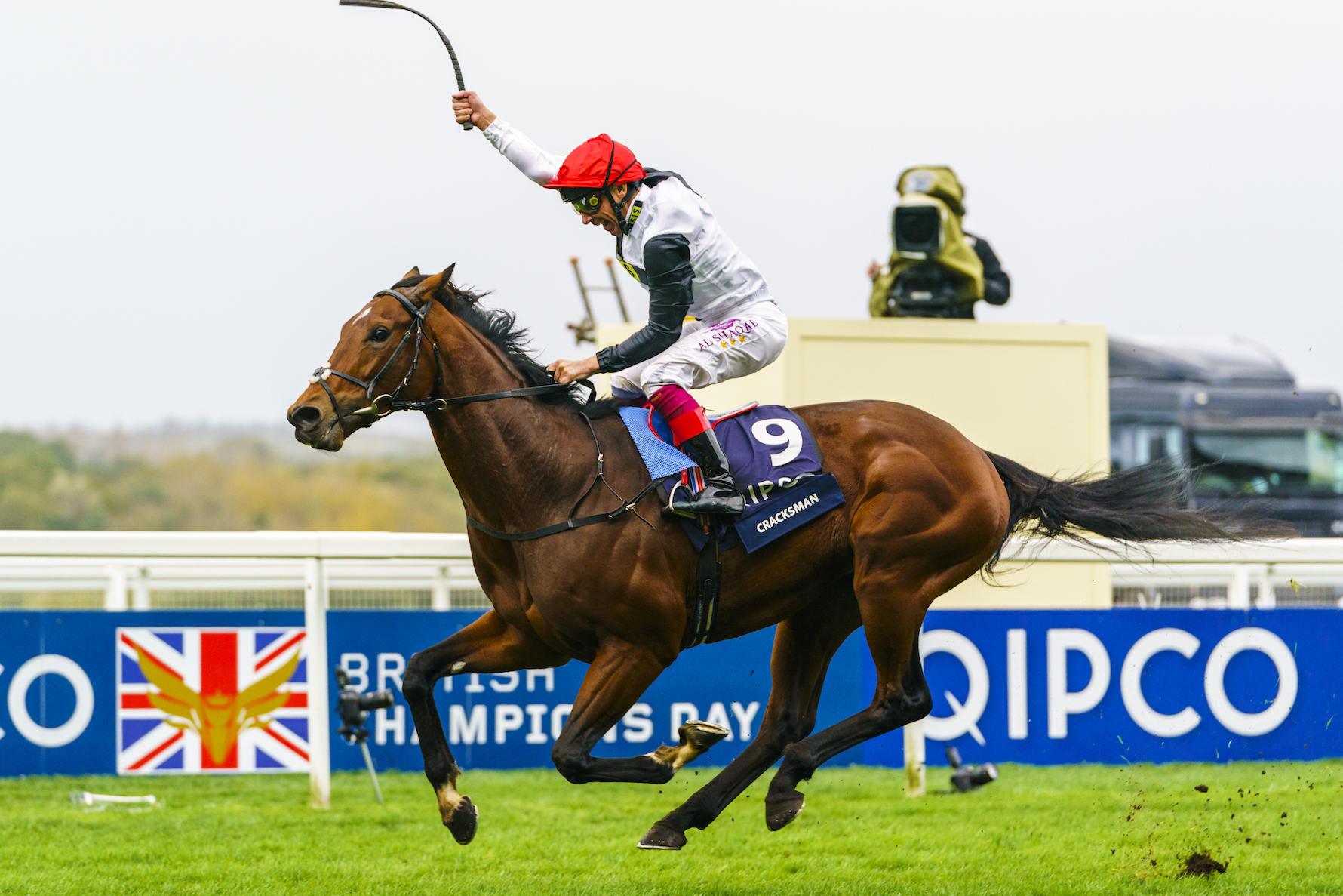 Remarkable spectacle: Cracksman produced the highest-rated performance in Europe last season in the Qipco Champion Stakes