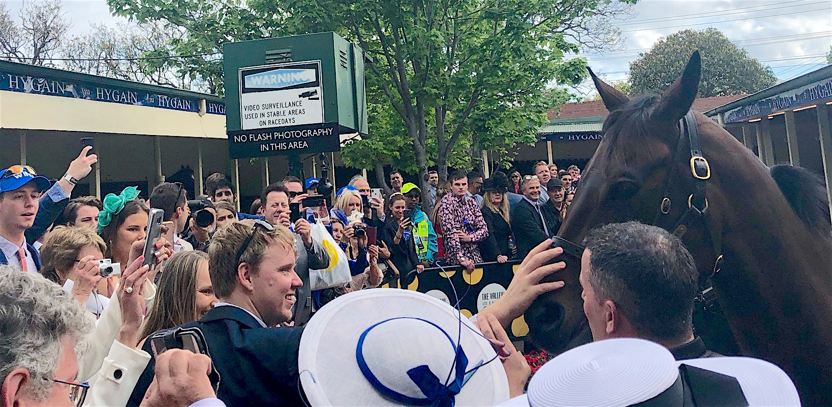 Something to tell your grandchildren about: they will remember forever the moment they got up close and personal with the icon that is Winx. Photo: Amanda Duckworth