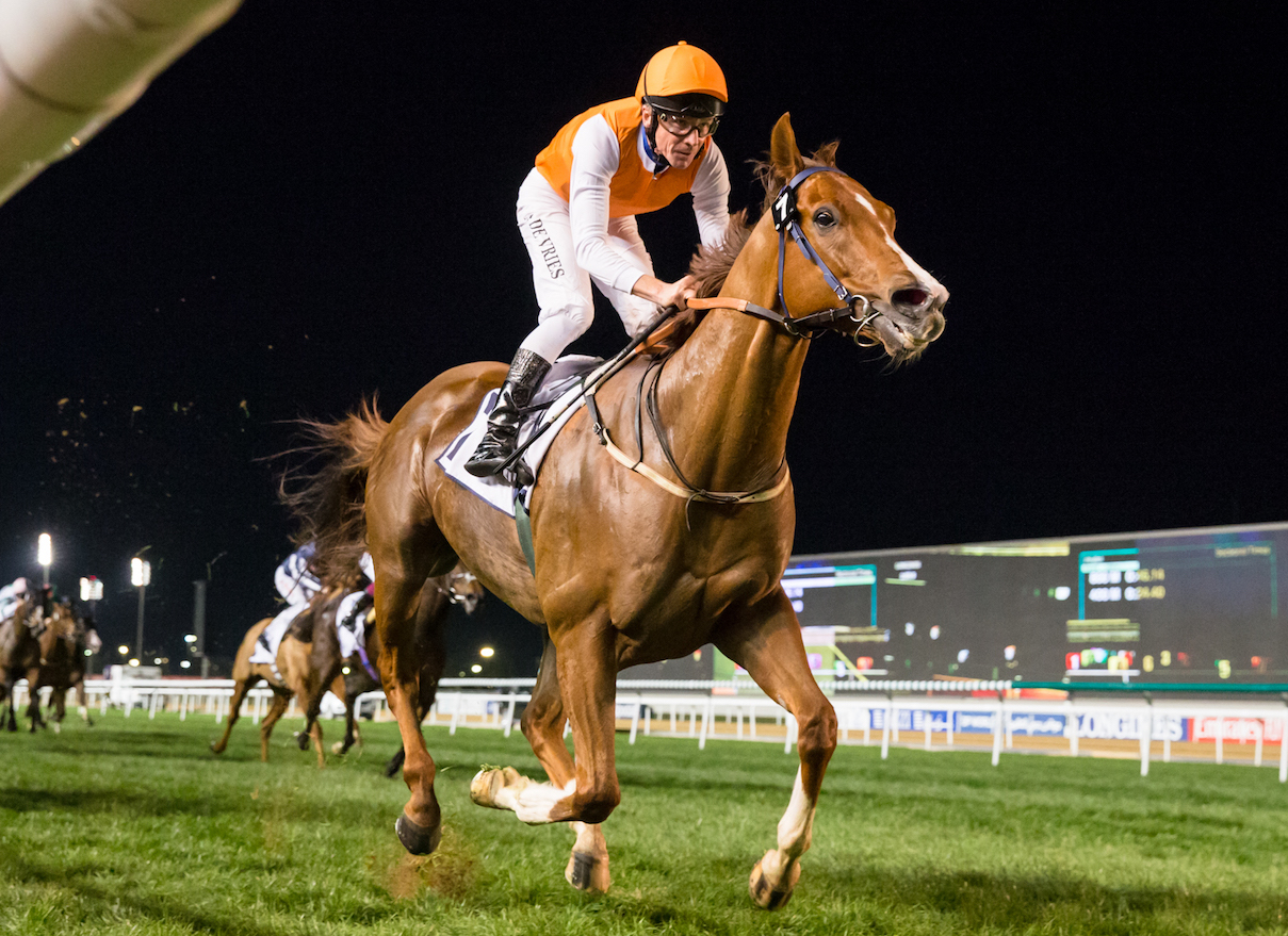 Success at the Carnival: Mazzini winning a six-furlong handicap at Meydan in February. Photo: Dubai Racing Club