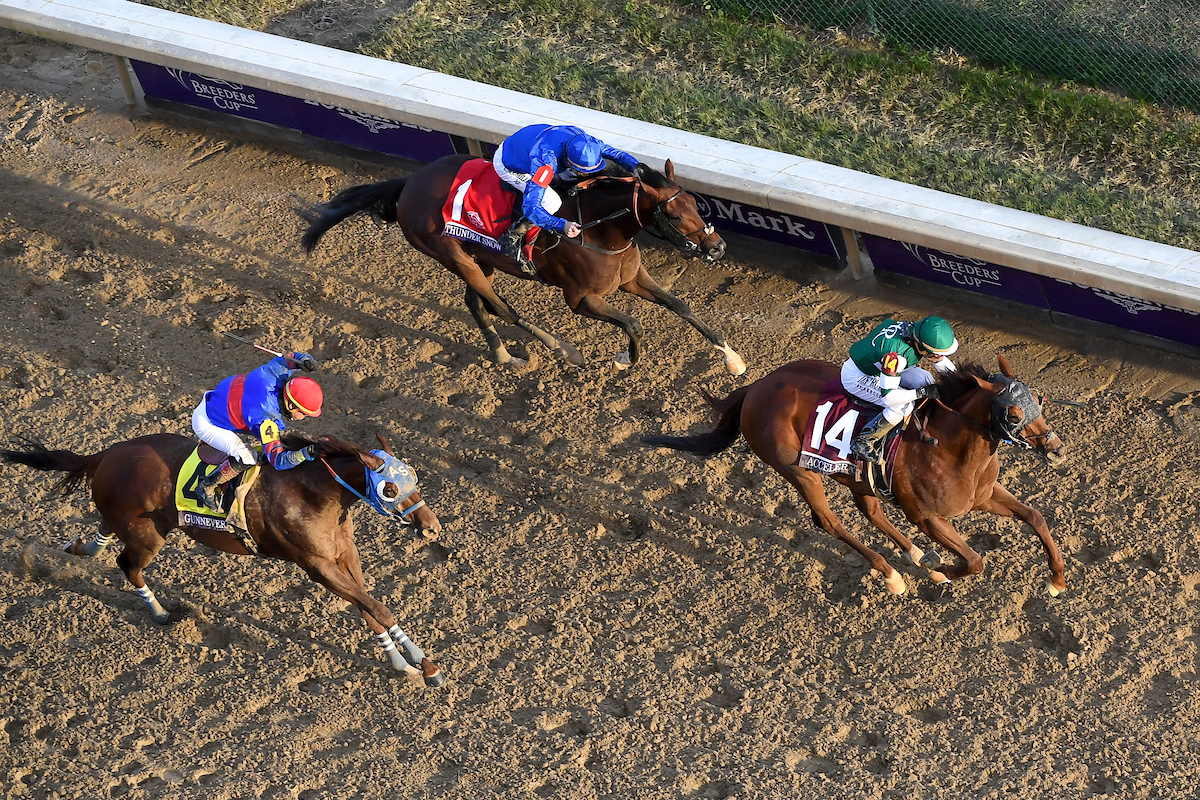 Gunnevera (left) finishing second to Accelerate in the Breeders' Cup Classic at Churchill Downs last November - ahead of Thunder Snow (top), who is one of the favorites to win the World Cup on Saturday. Photo: John Voorhees/Eclipse Sportswire/CSM /Breeders Cup