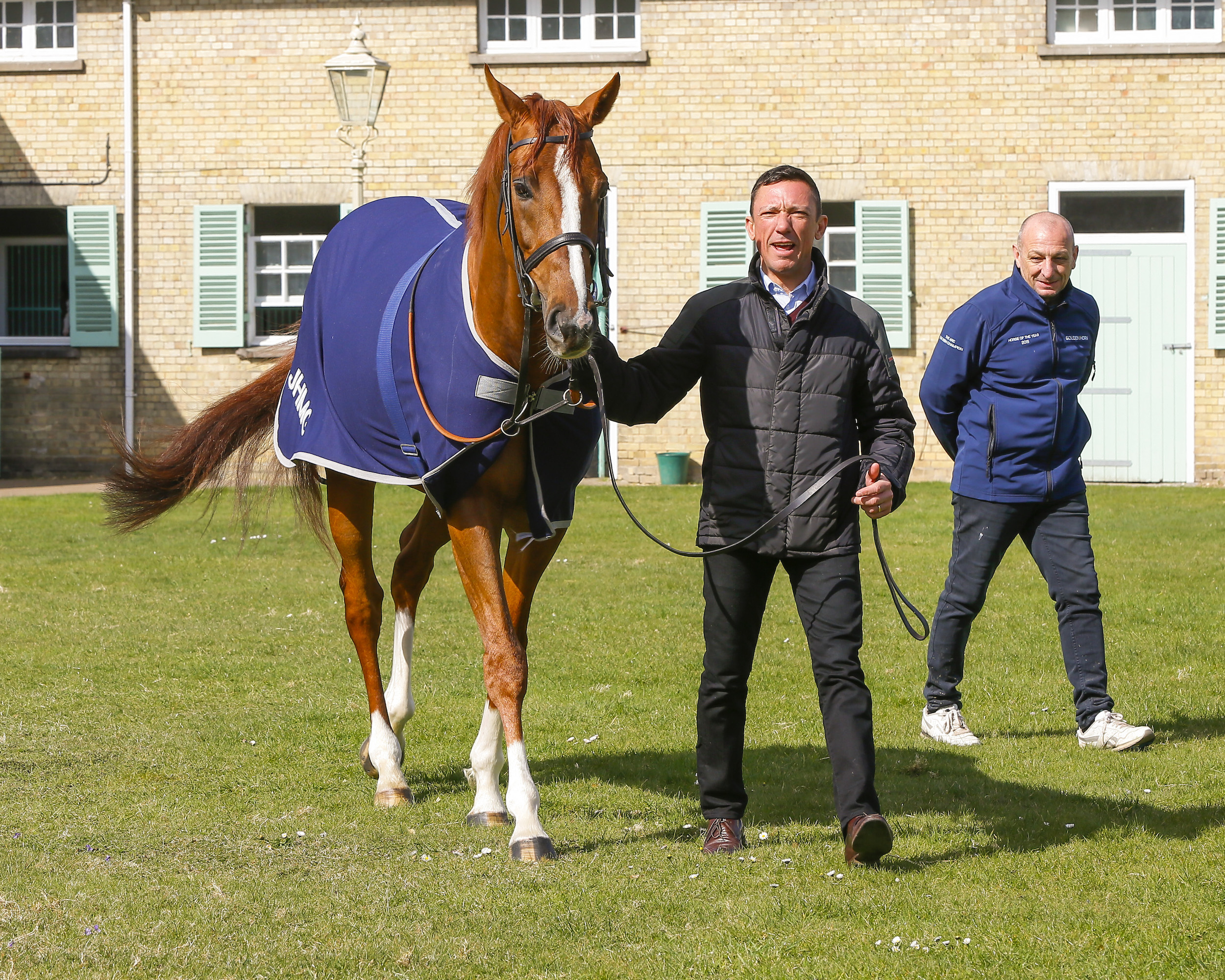 "Stradivarius in calmer mood with Dettori at Clarehaven. ""He's bit of  lad,"" the jockey said, ""but he's good once you are on board."" Photo: Weatherbys Hamilton"