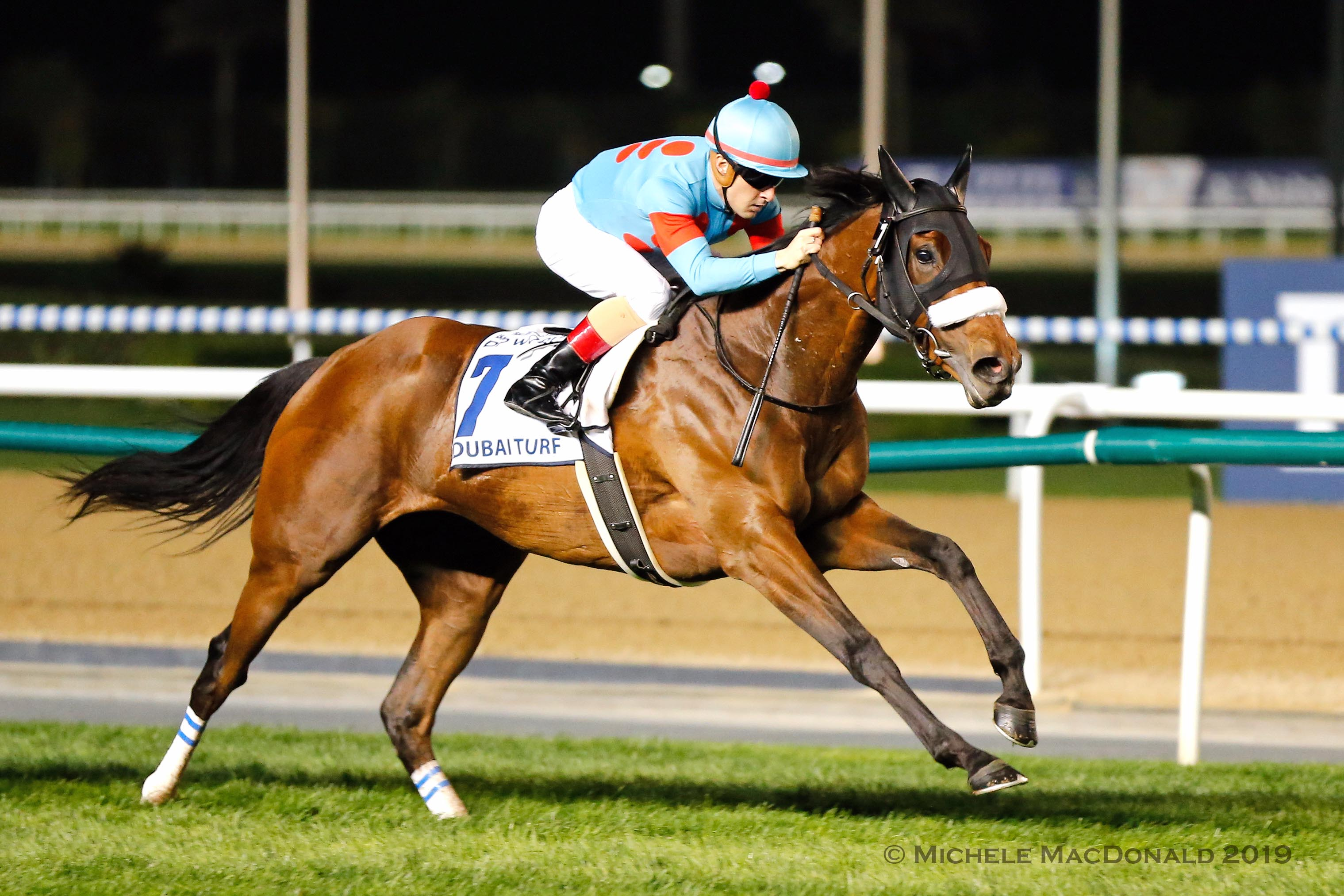In a class of her own: Almond Eye (Christophe Lemaire) has the Dubai Turf firmly under control. Photo: Michele MacDonald