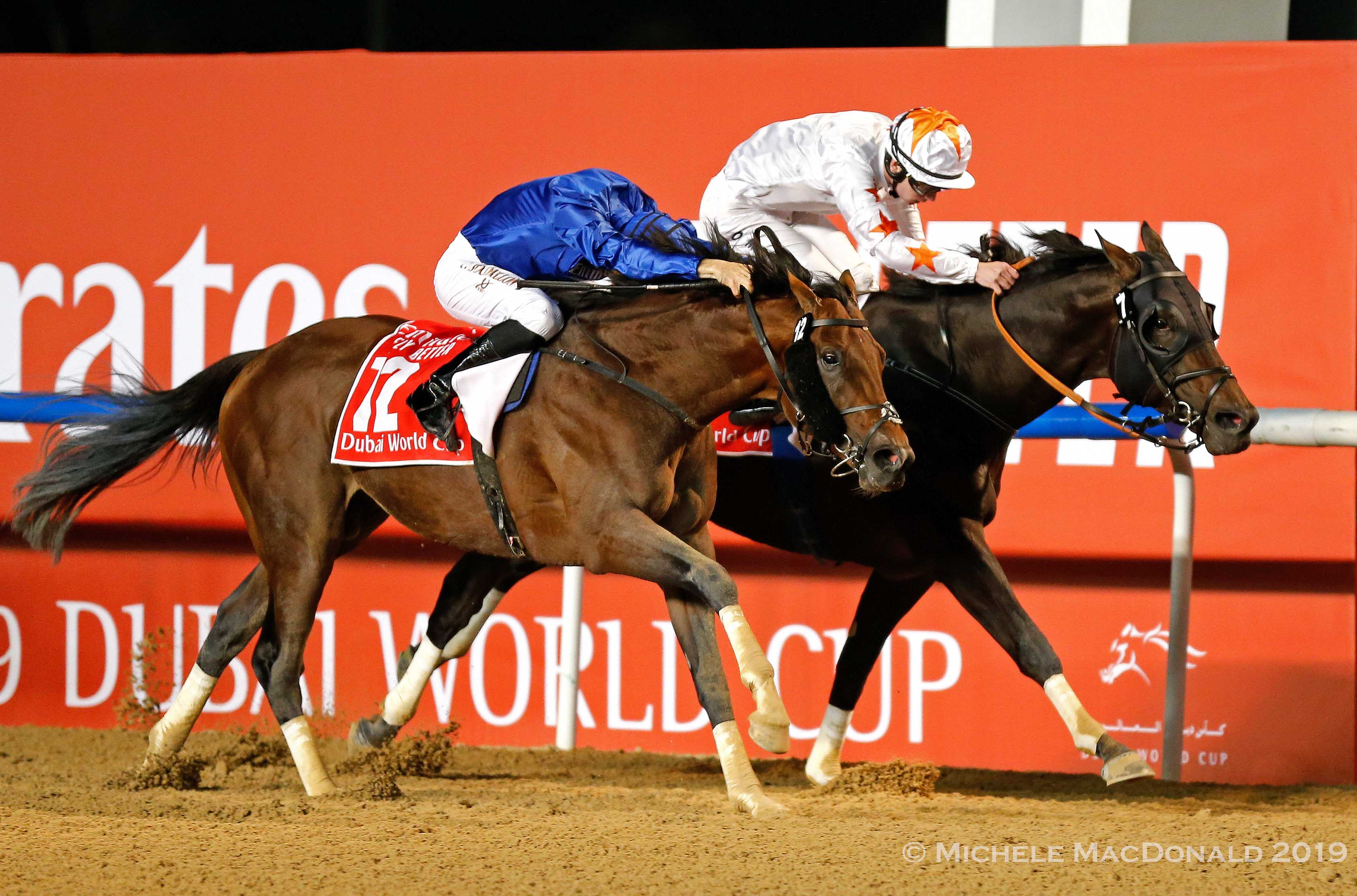 Never say die: Thunder Snow (near) refuses to yield to Gronkowski (Oisin Murphy) as they race to the wire in the Dubai World Cup. Photo: Michele MacDonald