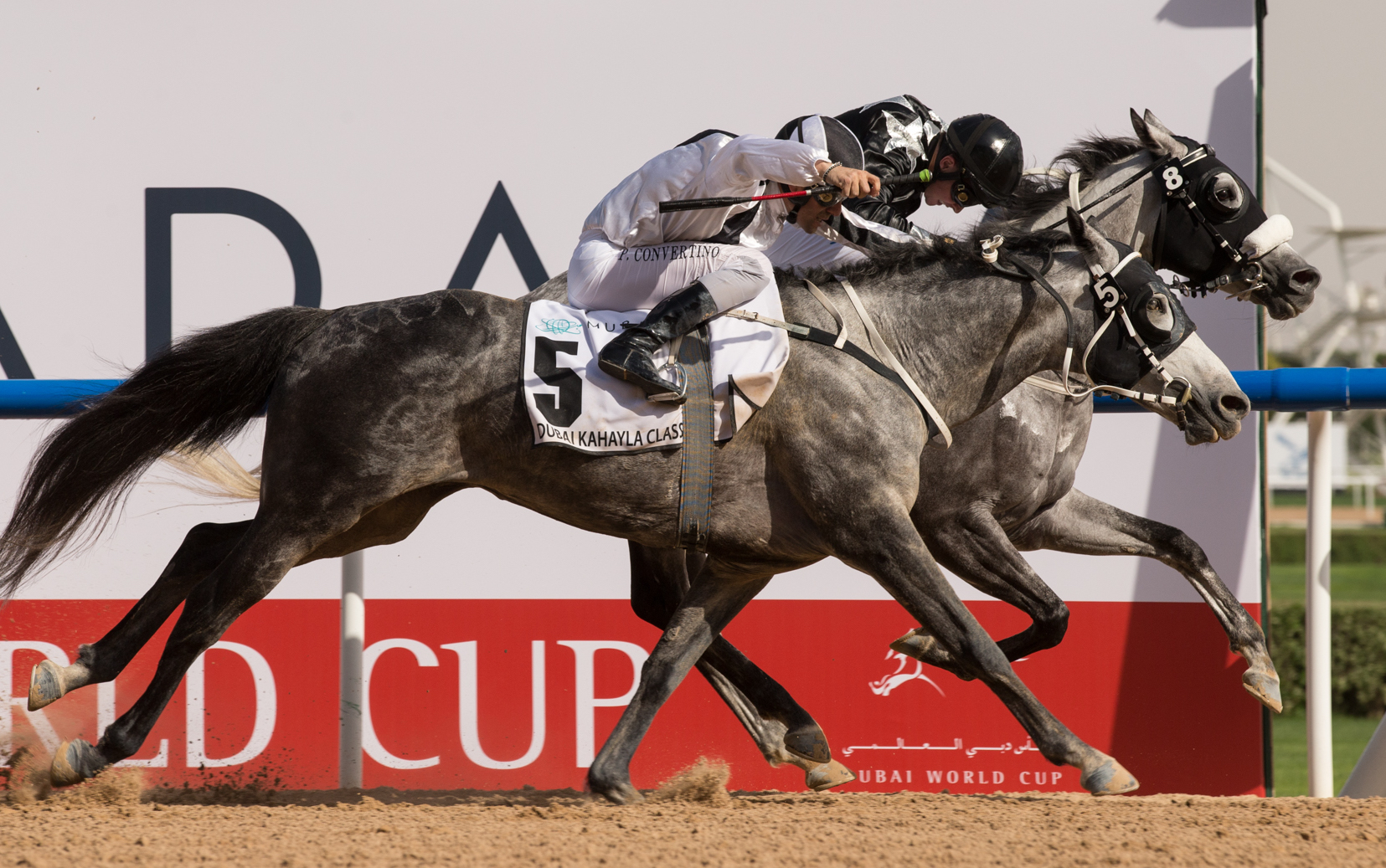 AF Maher (Tadhg O'Shea, far side) holds off Fazza Al Khaledia to win the Dubai Kahayla Classic by a nose in one of the most exciting finishes of Dubai World Cup day. Photo: Erika Rasmussen/Dubai Racing Club