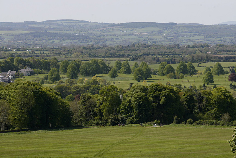 "Ballylinch Stud is in County Kilkenny, within the Mount Juliet estate.""The Malones [the owners] have great appreciation for lands and the countryside, and for honouring the heritage of properties,"" says managing director John O'Connor. Photo: Horses of Legend"