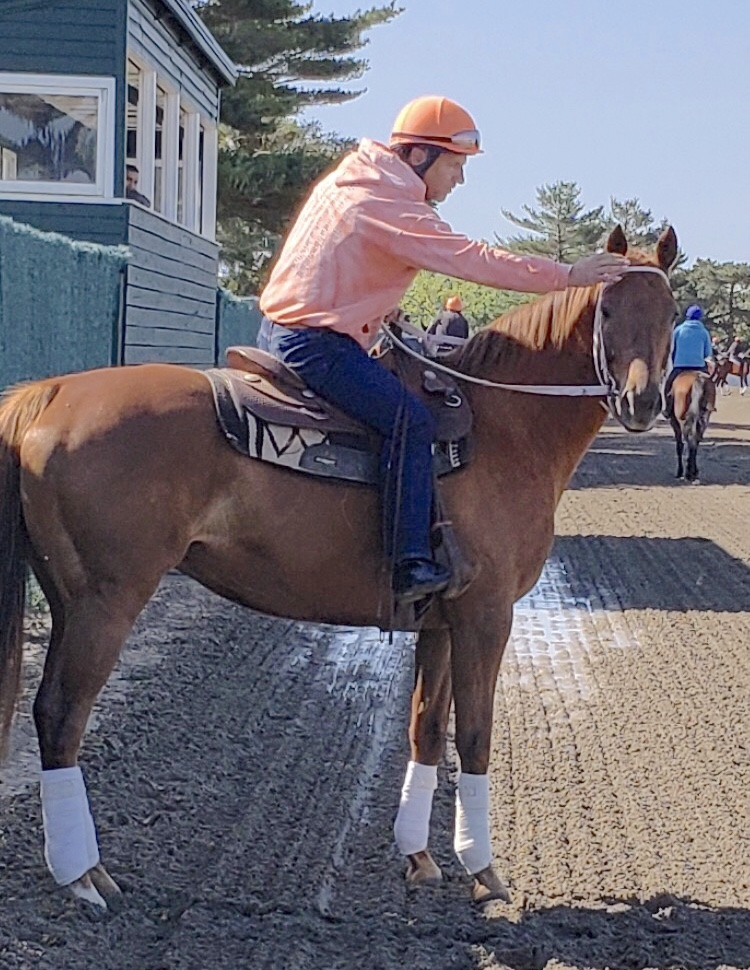 Trainer Kelly Breen with his Belmont hero Ruler On Ice during his time back at his barn last year. Photo courtesy of Kelly Breen
