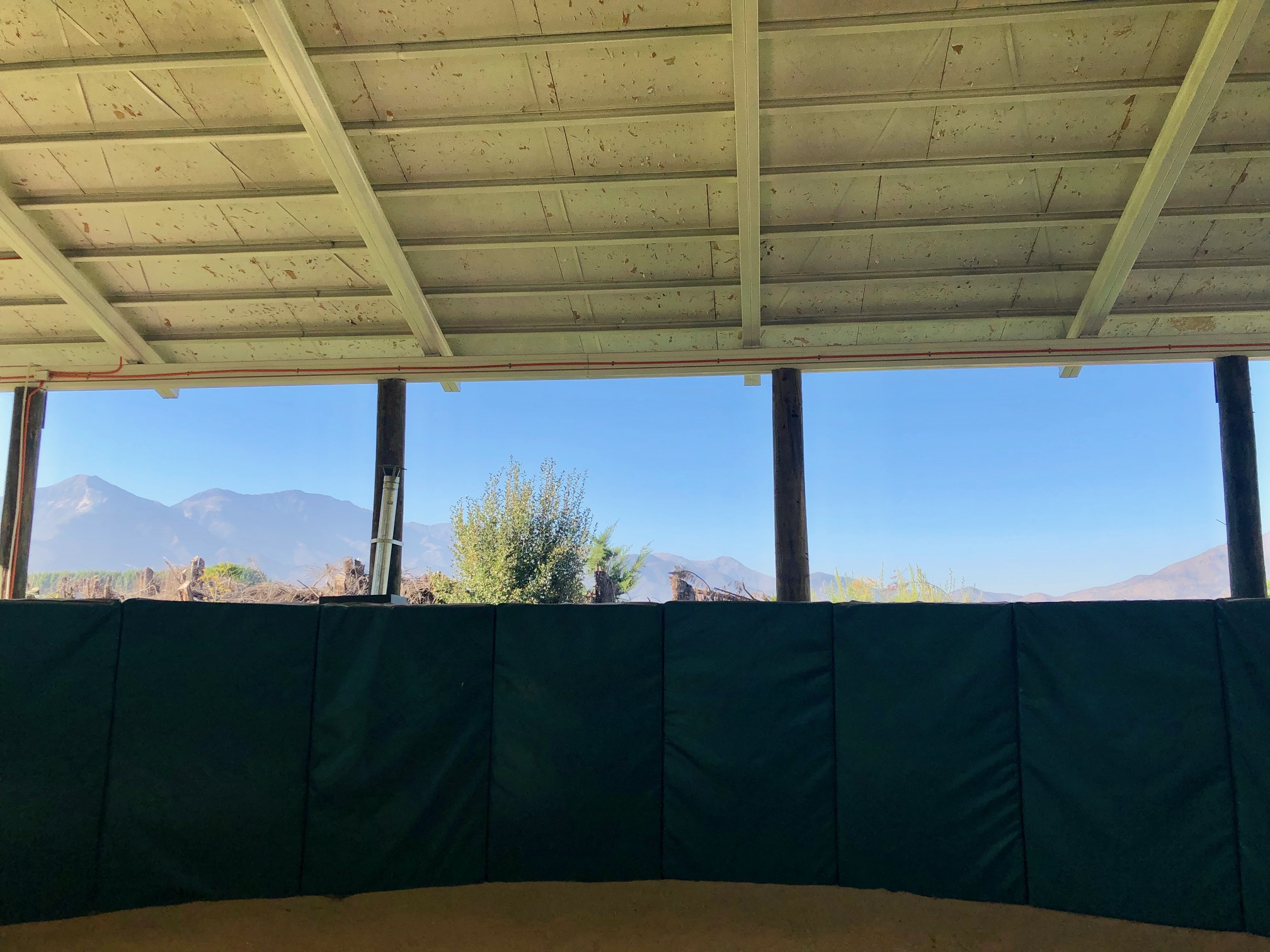 Room with a view: California Chrome's breeding shed is overlooked by the Andes. Photo: Amanda Duckworth