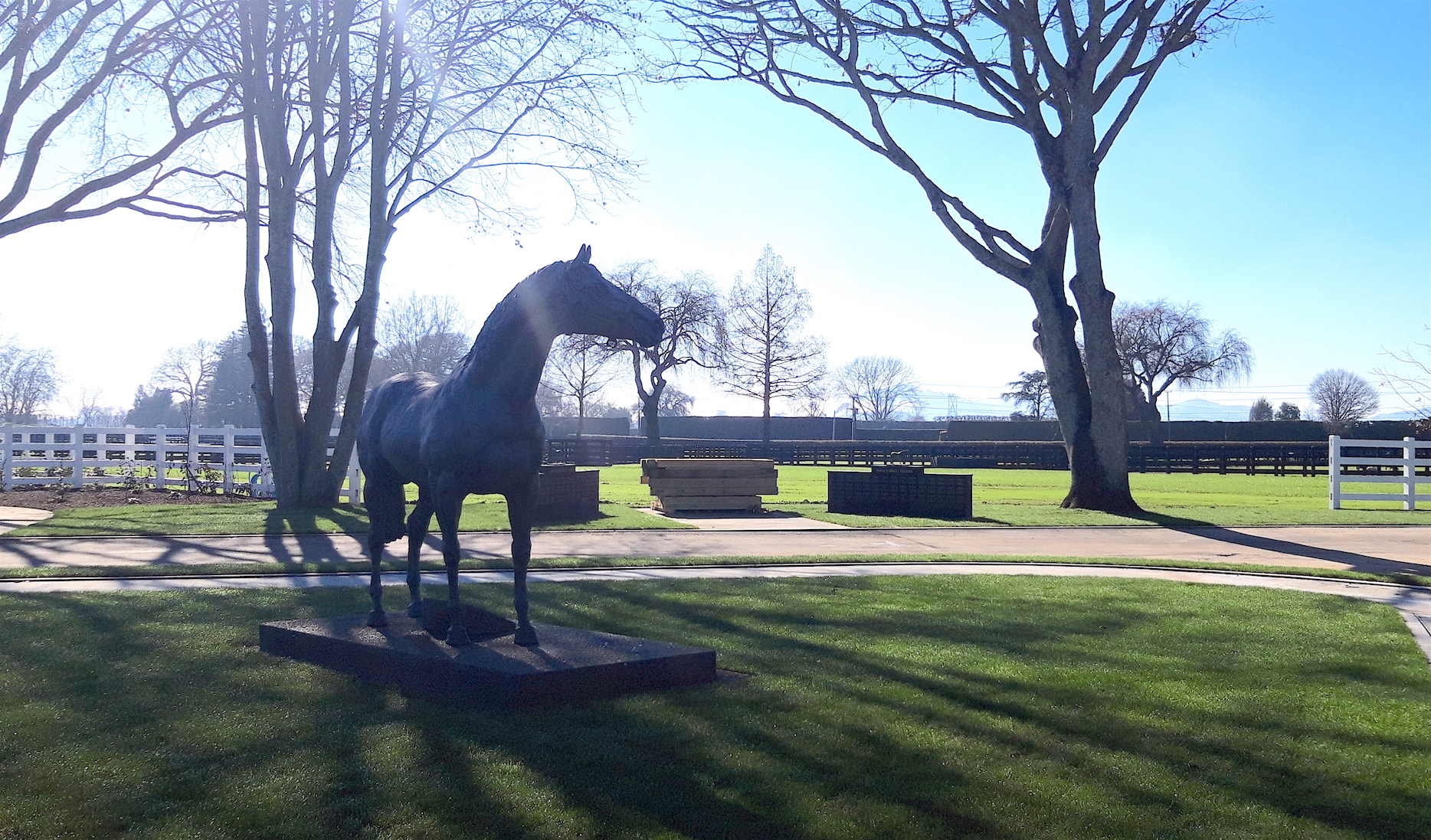 The impressive statue of Sir Tristram that presides over the main yard at Cambridge Stud. Both he and his outstanding stallion son Zabeel are buried on site